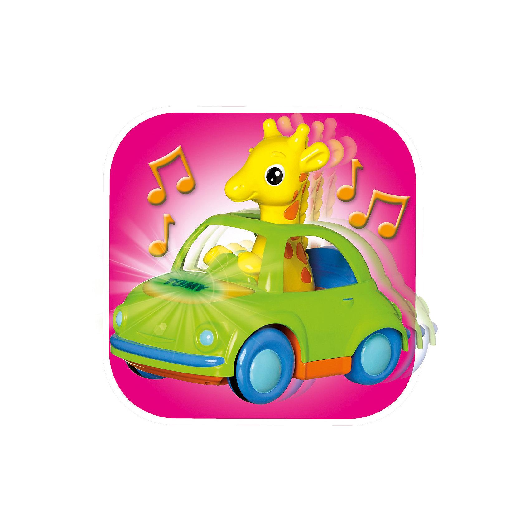 Игрушка Веселый Жираф-Водитель, TOMYМашинки и транспорт для малышей<br>Яркая оригинальная игрушка обязательно понравится вашему малышу. Игрушка представляет собой машинку за рулем которой сидит милый жираф. Как только вы слегка нажмете на него, послышится звук заводящегося мотора, капот будет гореть сначала красным, а потом зеленым цветом и машина помчится вперед. Малыши обожают игрушки со световыми и звуковыми эффектами, этот жираф подарит много радости и улыбок вашему крохе. Игрушка выполнена из высококачественных материалов, не имеет острых углов, безопасна для ребенка.<br>Этот жираф подарит много радости и улыбок вашему крохе.  <br><br>Дополнительная информация:<br><br>- Материал: пластик.<br>- Высота: 9х15х13 см.<br>- Цвет: желтый, зеленый, оранжевый.<br>- Звуковые  и световые эффекты<br>- Элемент питания: 3 батарейки ААА ( в комплекте).<br><br>Игрушку Веселый Жираф-Водитель, TOMY (Томи) можно купить в нашем магазине.<br><br>Ширина мм: 226<br>Глубина мм: 167<br>Высота мм: 132<br>Вес г: 453<br>Возраст от месяцев: 9<br>Возраст до месяцев: 36<br>Пол: Унисекс<br>Возраст: Детский<br>SKU: 3922279