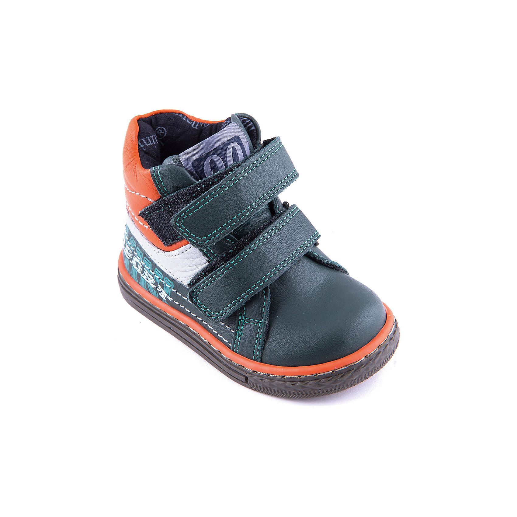 Ботинки для мальчика MinimenМодные кожаные ботинки для мальчика от известного бренда Minimen. Изделие предназначено для использования в сухую погоду при температуре воздуха выше +10 градусов и обладает следующими особенностями:<br>- комбинированный цвет, эффектный дизайн;<br>- 2 ремешка с велкро;<br>- усиленный противоударный мыс;<br>- укрепленный задник надежно фиксирует пятку;<br>- мягкий верхний задник защищает от скольжения стопы;<br>- дышащая подкладка из натурального хлопка;<br>- анатомическая стелька с супинатором заботливо поддерживает стопу;<br>- легкая нескользящая подошва.<br>Отличная обувь для любимых ножек!<br><br>Дополнительная информация:<br>- Температурный режим: выше +10 градусов<br>- Состав: <br>Материал верха: натуральная кожа 100%; <br>Материал подкладки: текстиль хлопок 100%; <br>Материал подошвы: термопластик 100%<br><br>Ботинки для мальчика Minimen (Минимен) можно купить в нашем магазине<br><br>Ширина мм: 262<br>Глубина мм: 176<br>Высота мм: 97<br>Вес г: 427<br>Цвет: зеленый<br>Возраст от месяцев: 9<br>Возраст до месяцев: 12<br>Пол: Мужской<br>Возраст: Детский<br>Размер: 20,21,24,23,22<br>SKU: 4008635