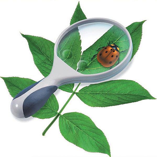 Лупа, Edu-ToysНаборы шпиона<br>Лупа, Edu-Toys станет замечательным помощником для Вашего ребенка в его исследованиях окружающего мира и природы. Высококачественная стеклянная оптика обеспечивает отличное качество изображения. Лупа имеет диаметр 10 см. и 2-кратное увеличение, а также два миниатюрных окошечка с 3-х и 4-х кратным увеличением. Ручка оснащена резиновыми вставками для удобства держания.<br><br>Дополнительная информация:<br><br>- Материал: пластик, стекло.<br>- Диаметр: 10 см.<br>- Длина лупы: 19,5 см.<br>- Размер упаковки: 22 х 13,5 х 3 см.<br>- Вес: 210 гр.<br><br>Лупу, Edu-Toys, можно купить в нашем интернет-магазине.<br><br>Ширина мм: 110<br>Глубина мм: 30<br>Высота мм: 150<br>Вес г: 210<br>Возраст от месяцев: 96<br>Возраст до месяцев: 144<br>Пол: Унисекс<br>Возраст: Детский<br>SKU: 4013708