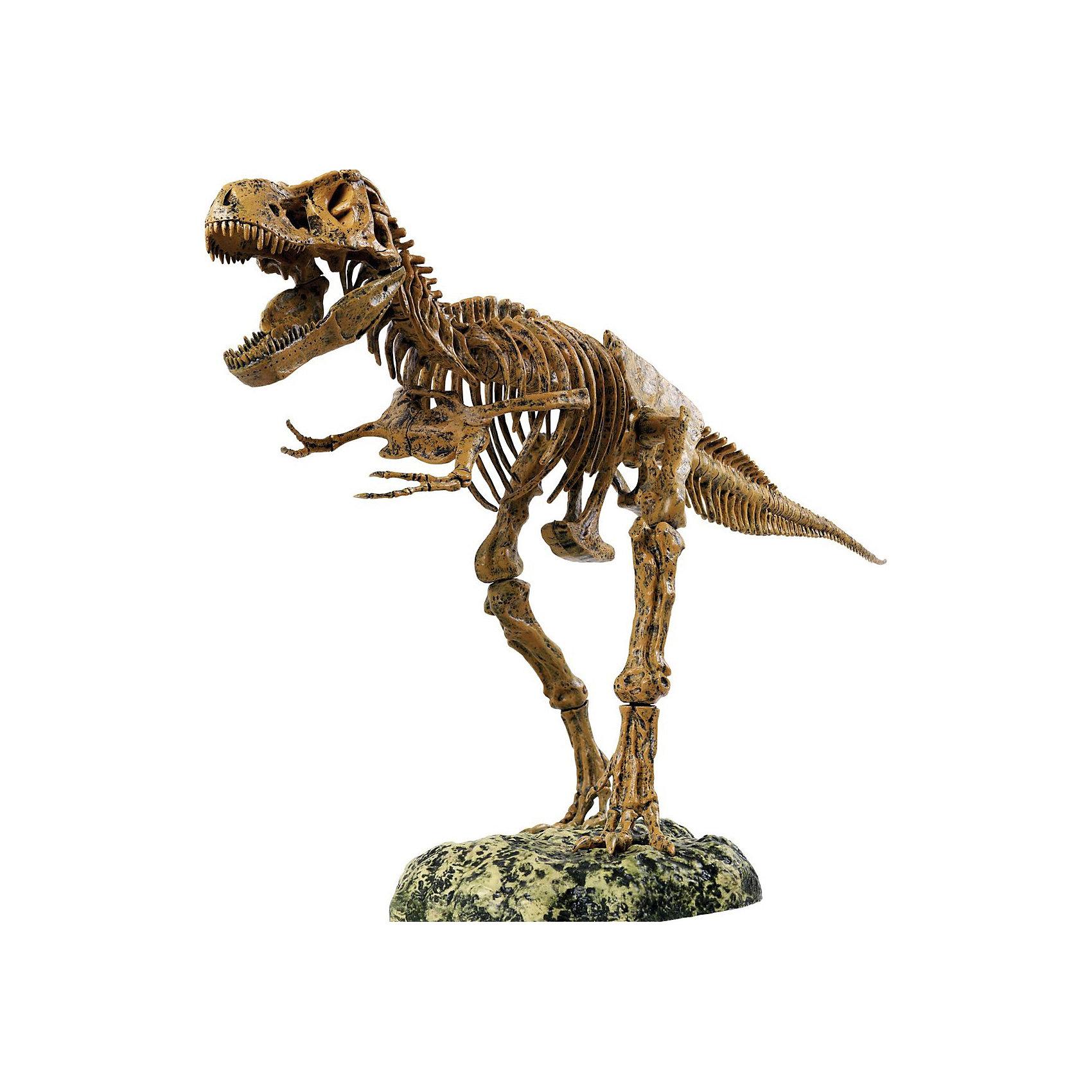 Набор скелет динозавра 91см, Edu-ToysС помощь увлекательного Набора Скелет динозавра, Edu-Toys Вы сможете собрать впечатляющую, высотой 91 см., копию скелета древнего ящера тираннозавра Т-Rex. В комплекте 51 деталь для сборки, в точности воспроизводящая все кости скелета легендарного динозавра. Готовая модель настолько реалистична, что больше напоминает музейный экспонат, чем игрушку. Подробная инструкция поможет легко собрать всю конструкцию, для удобства сборки на каждой детали выгравирован номер. <br><br>Дополнительная информация:<br><br>- В комплекте: 51 деталь, стенд, инструкция по сборке.<br>- Высота модели: 91 см.<br>- Материал: пластик.<br>- Размер упаковки: 61 x 41 x 9 см.<br>- Вес: 2,15 кг.<br><br>Набор скелет динозавра, Edu-Toys, можно купить в нашем интернет-магазине.<br><br>Ширина мм: 620<br>Глубина мм: 42<br>Высота мм: 380<br>Вес г: 2150<br>Возраст от месяцев: 96<br>Возраст до месяцев: 144<br>Пол: Унисекс<br>Возраст: Детский<br>SKU: 4013735