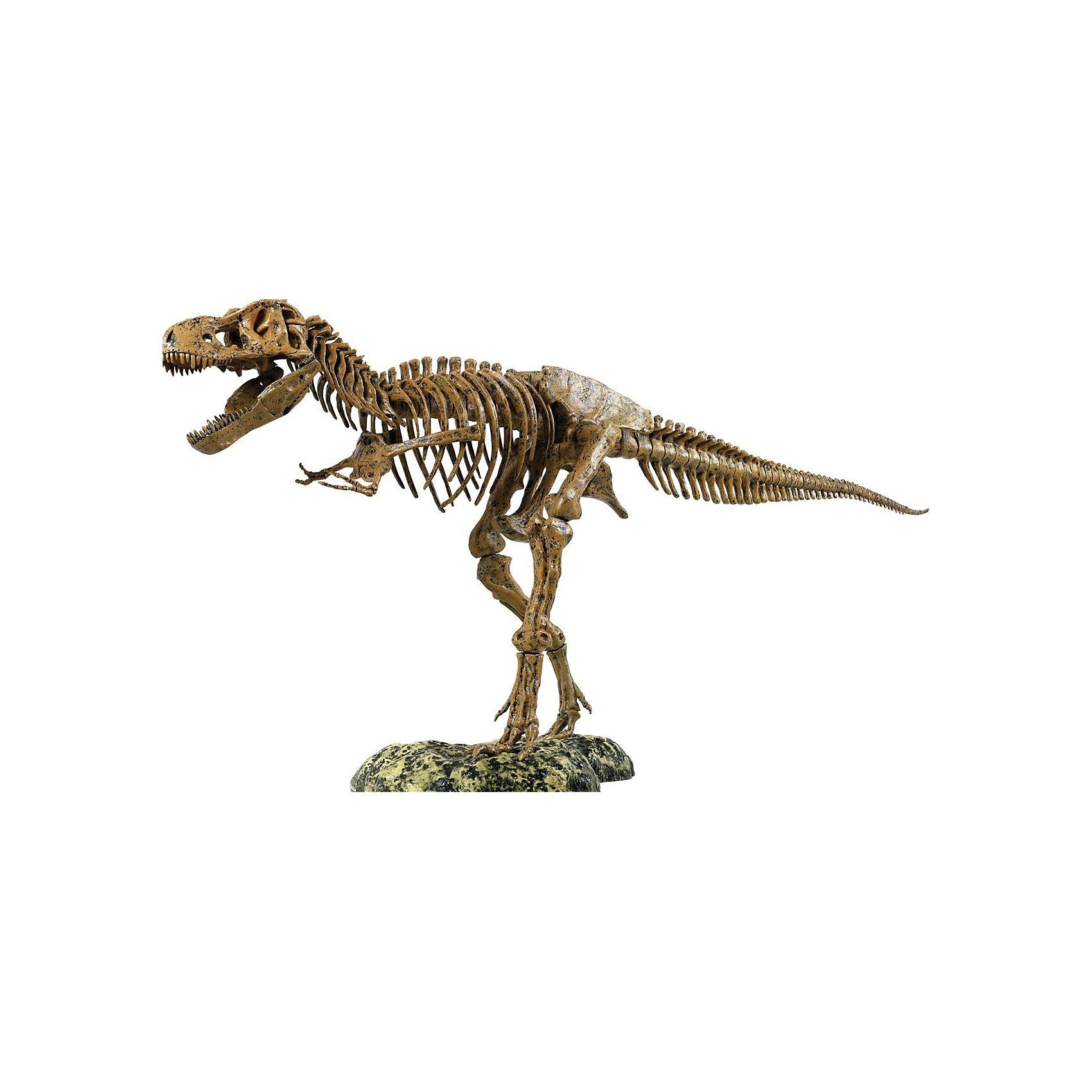 Набор скелет динозавра 91см, Edu-Toys от myToys