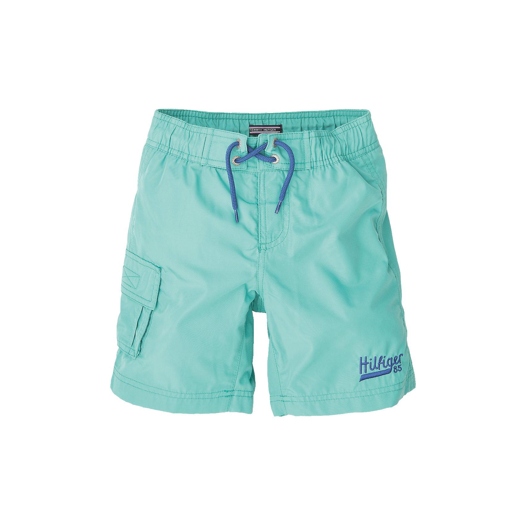 Плавательные шорты для мальчика Tommy HilfigerКупальники и плавки<br>Плавательные шорты для мальчика Tommy Hilfiger. Состав: 100% полиамид<br><br>Ширина мм: 183<br>Глубина мм: 60<br>Высота мм: 135<br>Вес г: 119<br>Цвет: голубой<br>Возраст от месяцев: 60<br>Возраст до месяцев: 72<br>Пол: Мужской<br>Возраст: Детский<br>Размер: 116,140,176,164,152,128,122<br>SKU: 4025387