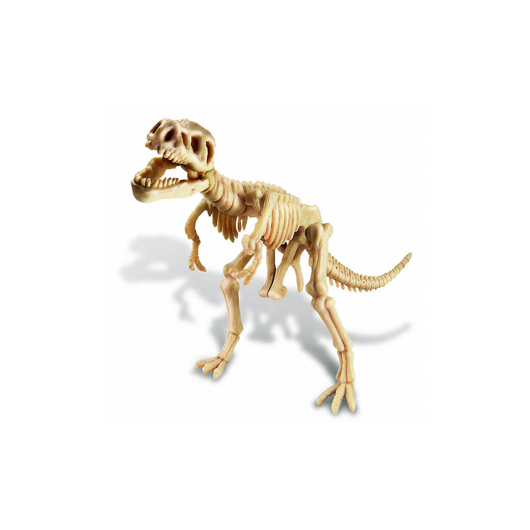 Скелет Тираннозавра, 4М от myToys