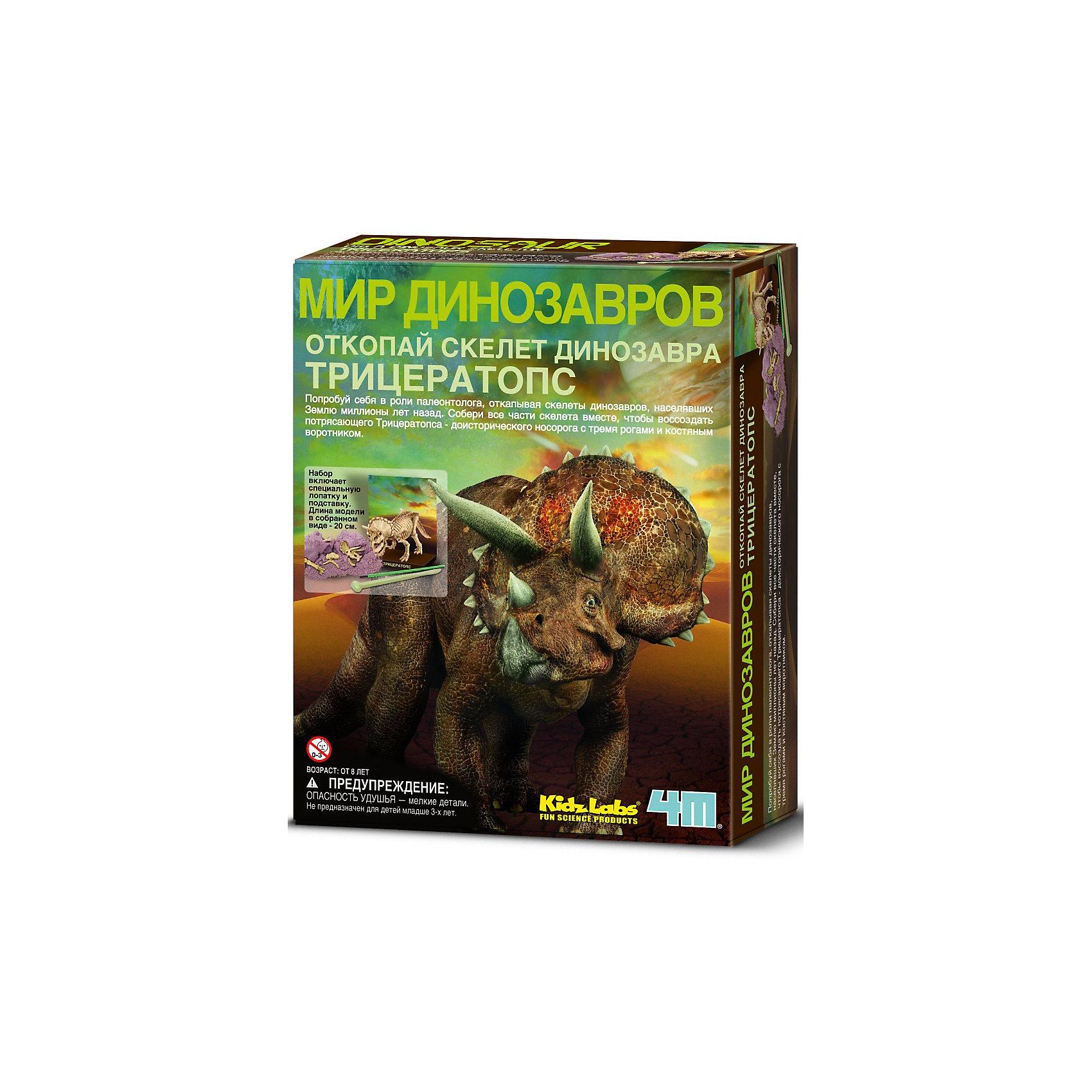 Скелет Трицератопса, 4МНаборы для раскопок<br>С набором Скелет Трицератопса, 4М Ваш ребенок может самостоятельно провести раскопки и отыскать кости потрясающего Трицератопса – доисторического носорога с тремя рогами и костяным воротником. Специальными археологическими инструментами (молоточком, скребком и кисточкой) нужно аккуратно расчистить гипсовый брикет красно-бурого цвета, имитирующий слой земли, освобождая косточку за косточкой. Когда работа на этом этапе подойдет к концу, начнется увлекательная сборка скелета – в соответствии с наглядной инструкцией ребенок соединяет кости с помощью мягкого воска. Самостоятельно собранный скелет древнего ящера станет отличным декором в комнате! <br><br>Характеристики:<br>-Развивает: мелкую моторику рук, фантазию, воображение, сообразительность, любознательность, усидчивость<br>-Расширенные возможности серии: можно собрать коллекцию скелетов динозавров<br>-В процессе раскопки костей и сборки ребенок знакомится со строением скелета динозавра <br>-Собранная модель может являться наглядным пособием <br><br>Комплектация:<br>-кисточка<br>-скребок с молоточком<br>-мягкий воск<br>-брикет, имитирующий слой земли (11,5х9х4,5 см)<br>-кости динозавра <br>-инструкция <br><br>Дополнительная информация:<br>-Вес в упаковке: 500 г<br>-Размеры в упаковке: 215х165х60 мм<br>-Размеры собранного скелета: 200 мм<br>-Материал: гипс, пластмасса, бумага, воск<br><br>Детский набор для проведения археологических раскопок Скелет Трицератопса – это увлекательное путешествие в загадочный и полный неожиданных открытий мир палеонтологии!<br><br>Набор Скелет Трицератопса, 4М можно купить в нашем магазине.<br><br>Ширина мм: 215<br>Глубина мм: 165<br>Высота мм: 60<br>Вес г: 500<br>Возраст от месяцев: 60<br>Возраст до месяцев: 168<br>Пол: Унисекс<br>Возраст: Детский<br>SKU: 4043546