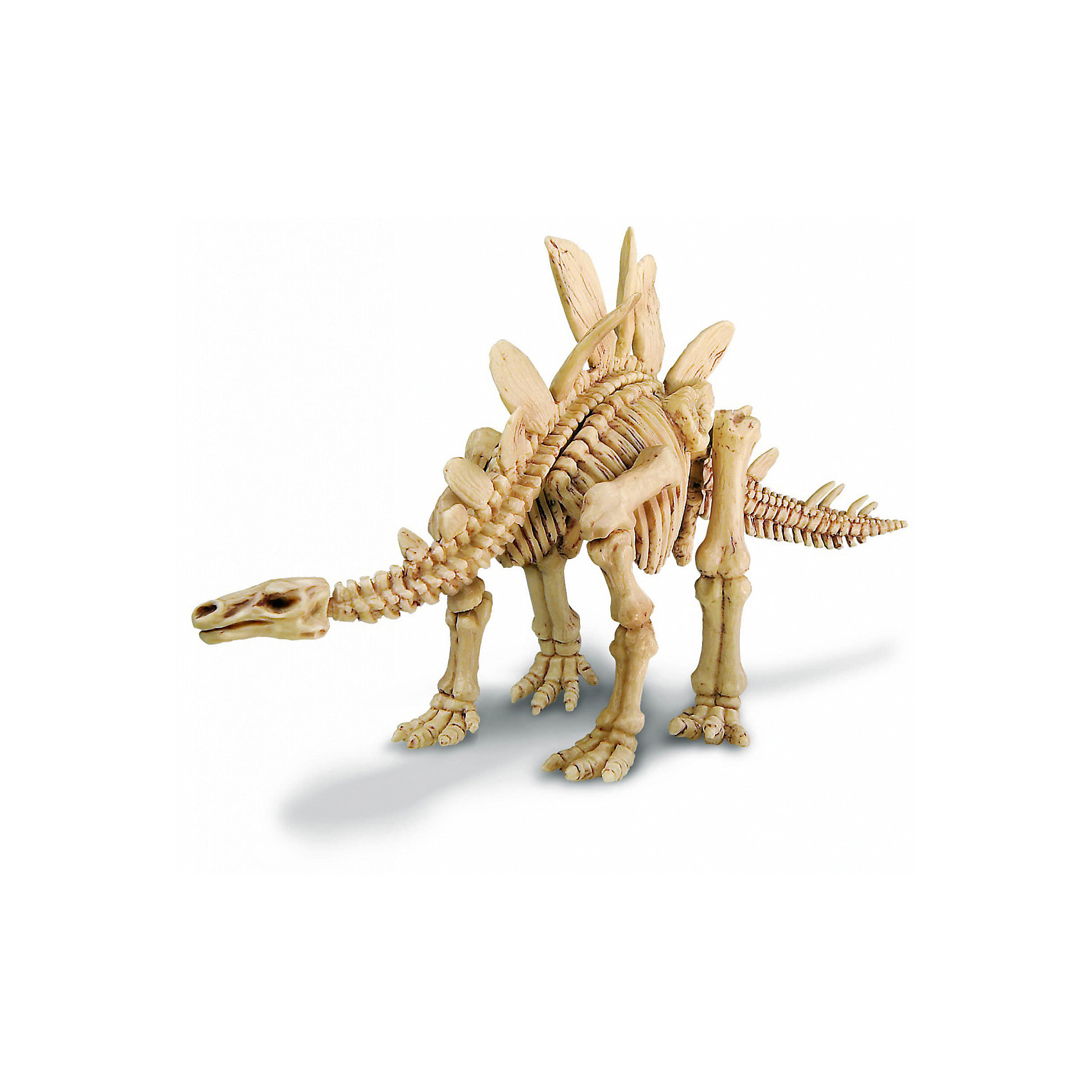 Скелет Стегозавра, 4М от myToys
