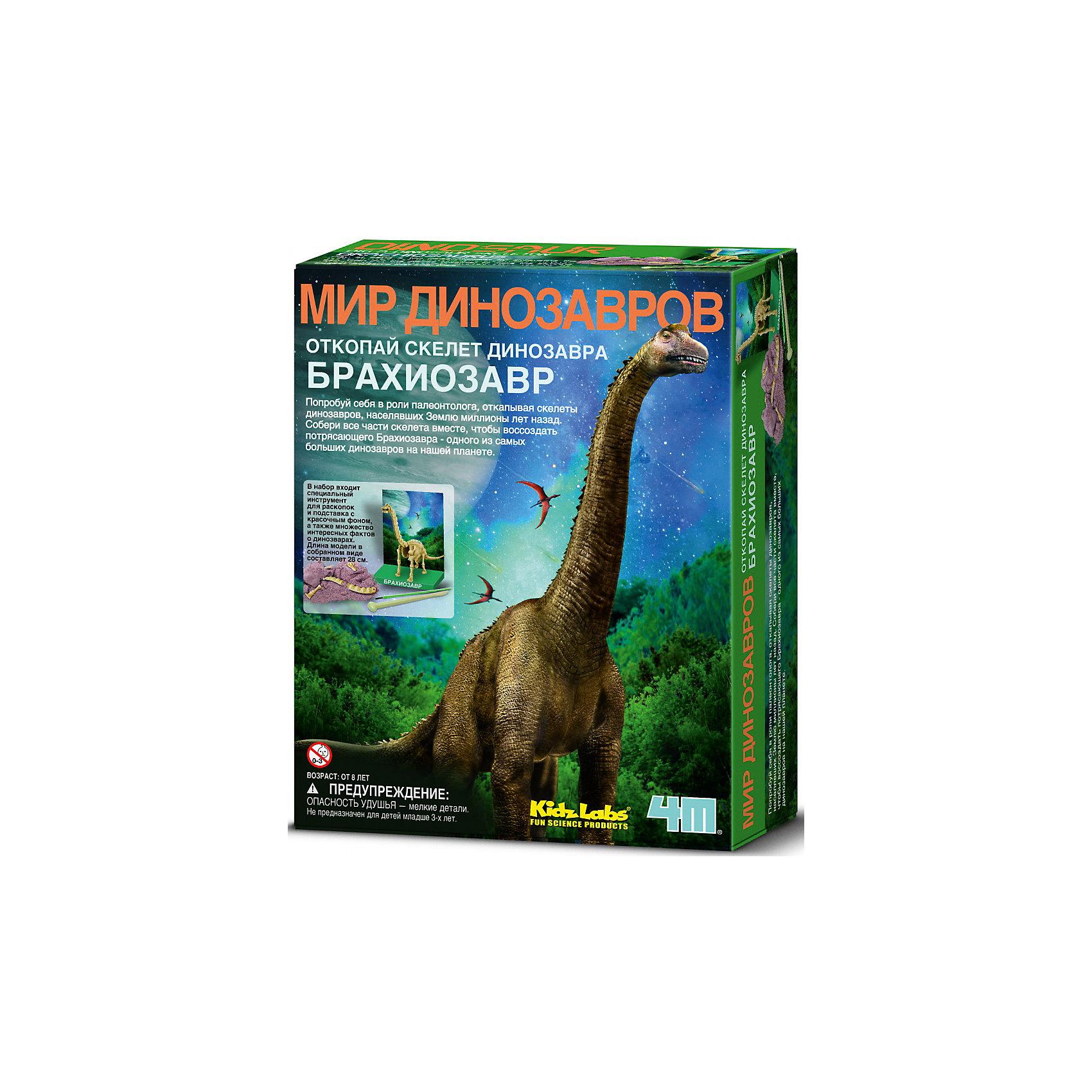 Скелет Брахиозавра, 4МНаборы для раскопок<br>Набор Скелет Брахиозавра, 4М создан специально для любознательных детей. Он позволяет провести настоящие археологические раскопки и из костей собрать скелет древнего ящера. С помощью инструкции, молоточком, скребком и кисточкой ребенок раскапывает кости динозавра из «земли» (специальный гипсовый брус, имитирующий землю)  и начинает собирать скелет. Чтобы конструкция была крепче, места стыка костей прокладываются мягким воском. Самостоятельно собранный скелет древнего ящера станет отличным декором в комнате! <br><br>Характеристики:<br>-Развивает: мелкую моторику рук, фантазию, воображение, сообразительность, любознательность, усидчивость<br>-Расширенные возможности серии: можно собрать коллекцию скелетов доисторических животных<br>-В процессе раскопки костей и сборки ребенок знакомится со строением скелета <br>-Собранная модель может являться наглядным пособием <br><br>Комплектация:<br>-кисточка<br>-скребок с молоточком<br>-мягкий воск<br>-брикет, имитирующий слой земли (11,5х9х4,5 см)<br>-кости динозавра <br>-инструкция <br><br>Дополнительная информация:<br>-Вес в упаковке: 500 г<br>-Размеры в упаковке: 215х165х60 мм<br>-Размеры собранного скелета: 280 мм<br>-Материал: гипс, пластмасса, бумага, воск<br><br>Почувствуйте себя палеонтологом с набором Скелет Брахиозавра, 4М – проведите настоящие раскопки, а из выкопанных костей соберите скелет динозавра <br><br>Набор Скелет Брахиозавра, 4М можно купить в нашем магазине.<br><br>Ширина мм: 215<br>Глубина мм: 165<br>Высота мм: 60<br>Вес г: 500<br>Возраст от месяцев: 60<br>Возраст до месяцев: 168<br>Пол: Унисекс<br>Возраст: Детский<br>SKU: 4043550