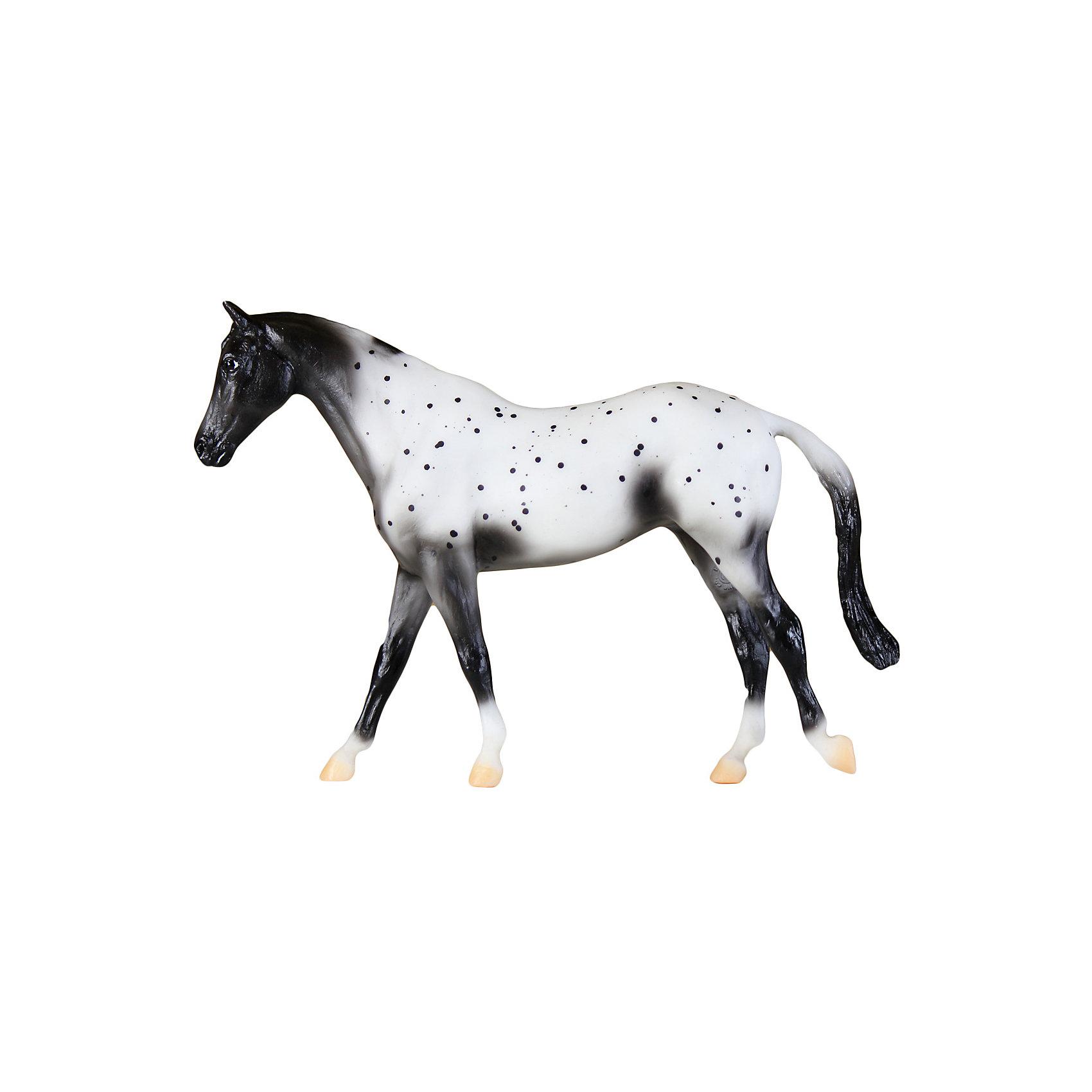Лошадь Аппалуза леопард, BreyerМир животных<br>Ваш ребенок всерьез мечтает о собственной лошадке, но, конечно, в домашних условиях его мечта останется только мечтой?<br>Модель лошади Лошадь Аппалуза леопард обязательно понравится детям и познакомит их с одной из интересных американских пород лошадей. Порода Аппалуза в последние годы стремительно набирает популярность по всему миру, эти лошади активно используются в классических видах конного спорта и вестерне. Также они весьма популярны в конном туризме, и как шоу-лошади (из-за яркой и необычной масти). Ребенку понравится играть с такой лошадкой, она прекрасно детализирована, выполнена в масштабе 1:12 и очень реалистично раскрашена. Игрушка изготовлена из высококачественных безопасных для детей материалов. Собери всю коллекцию лошадок и аксессуаров к ним, устраивай скачки и показательные выступления! <br><br>Дополнительная информация:<br><br>- Материал: пластик.<br>- Размер: 23х15 см.<br>- Масштаб: 1:12<br><br>Лошадь Аппалуза леопард, Breyer можно купить в нашем магазине.<br><br>Ширина мм: 279<br>Глубина мм: 67<br>Высота мм: 203<br>Вес г: 277<br>Возраст от месяцев: 48<br>Возраст до месяцев: 180<br>Пол: Унисекс<br>Возраст: Детский<br>SKU: 4046562