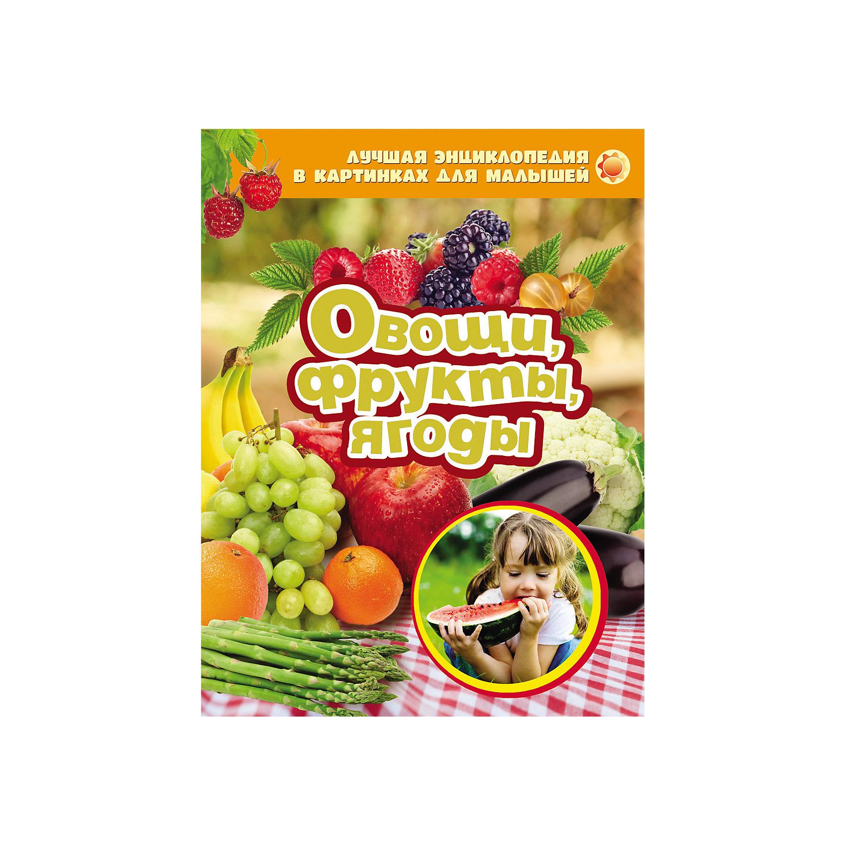 Овощи, фрукты, ягоды, Лучшая энциклопедия в картинках для малышей