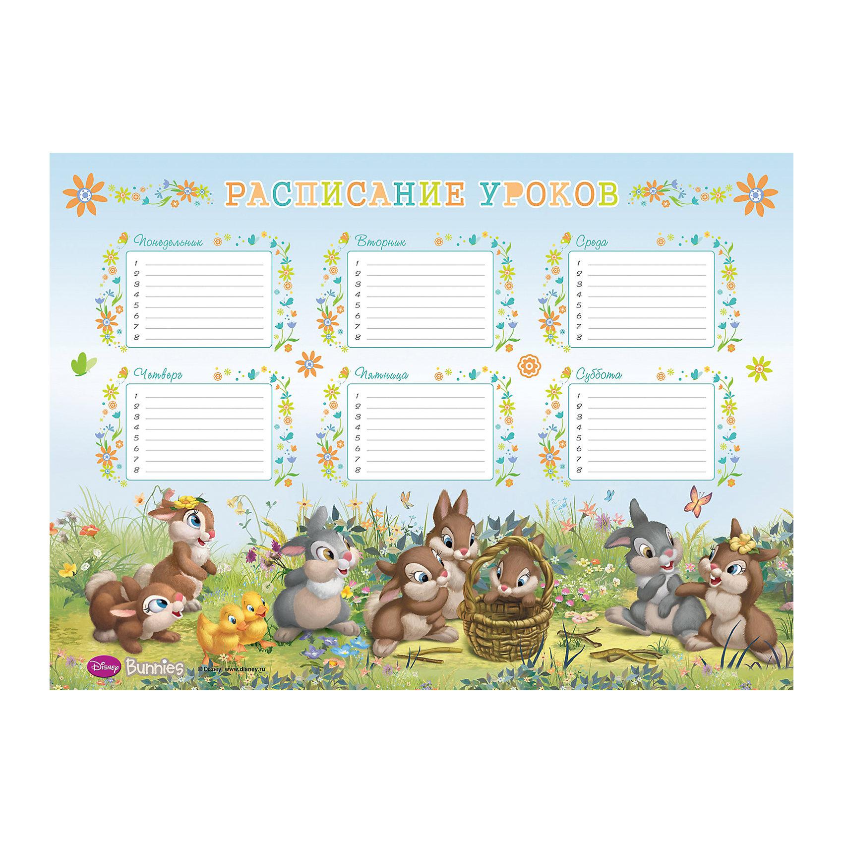 Расписание уроков A3 Bunnies