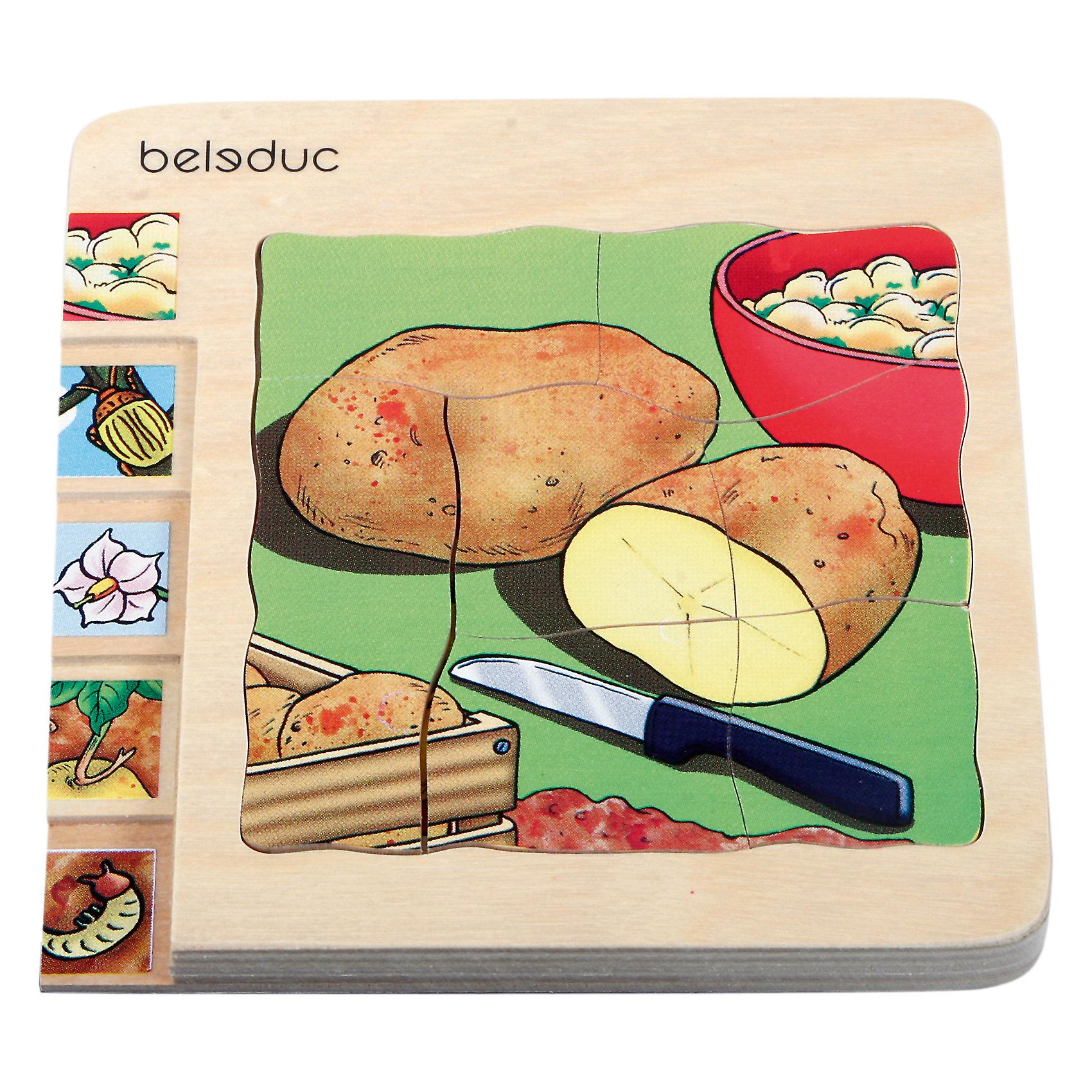 Многослойный пазл Картофель, BeleducС помощью Пазла Картофель, Beleduc (Беледук) дети узнают, как растет картошка. Задача ребенка – собрать не только части каждого из 4 пазлов, но и сложить слоями все пазлы в правильной последовательности от посадки картофелины с глазками до готовых клубней на столе.<br><br>Характеристики:<br>-Высокое качество обработки<br>-Гладкая, приятная на ощупь поверхность<br>-Крупные детали с закругленными углами<br>-Безопасные красители<br>-Игра развивает визуальное восприятие и мелкую моторику рук<br><br>Комплектация: основа с рамкой, 4 пазла из 30 частей<br><br>Дополнительная информация:<br>-Вес в упаковке: 330 г<br>-Размеры в упаковке: 20х18х2,5 см<br>-Материалы: дерево (береза)<br>-Размер игры: 14,3x14,5x1,8 см<br><br>Ваш ребенок с удовольствием сможет провести время за собиранием пазла и узнает, как растет картофель.  <br><br>Пазл Картофель, Beleduc (Беледук) можно купить в нашем магазине.<br><br>Ширина мм: 200<br>Глубина мм: 180<br>Высота мм: 25<br>Вес г: 330<br>Возраст от месяцев: 36<br>Возраст до месяцев: 60<br>Пол: Унисекс<br>Возраст: Детский<br>SKU: 4066484
