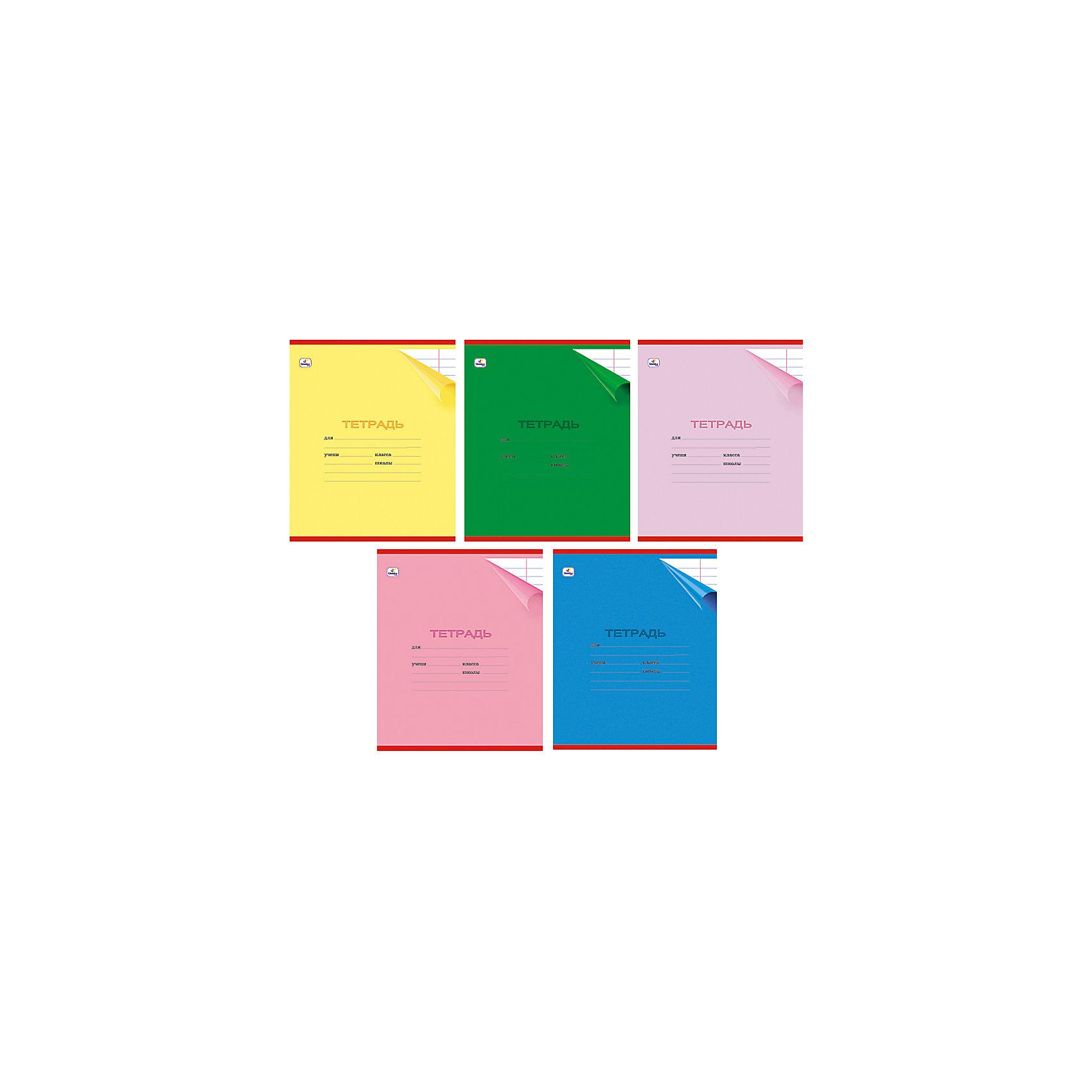 Тетрадь в линейку А5 (24 листа, в ассортименте)