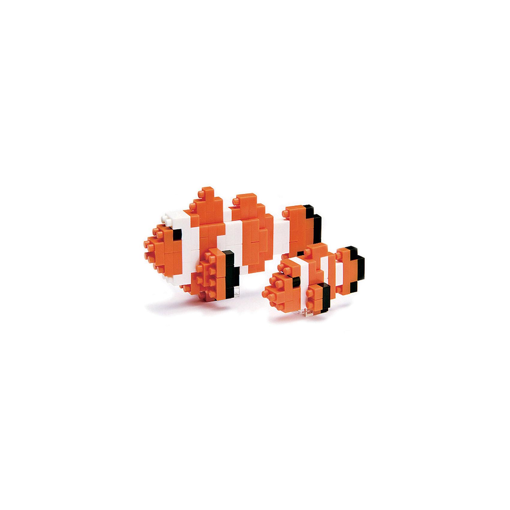 Рыба-клоун, nanoblock