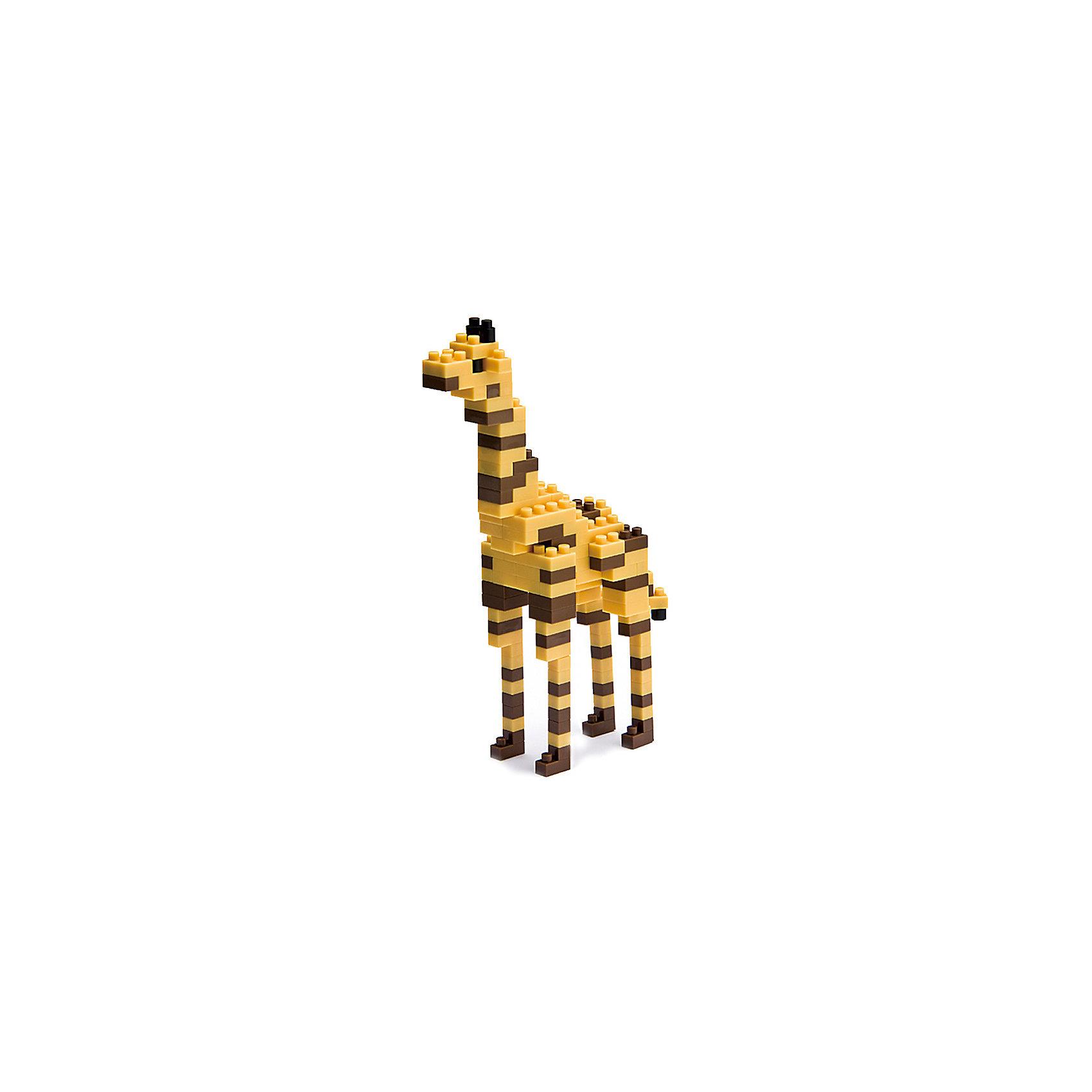 Жираф, nanoblockСтепной жираф - самое высокое из ныне живущих животное, обитает в основном в Африке! Наш нано-жираф, умещающийся на ладони, конечно не блещет ростом, зато как он похож на своего старшего собрата? Теперь не нужно много места, чтобы завести дома жирафа... <br><br>Дополнительная информация:<br><br>Размер собранного жирафа (ДхШхВ): 4х6х10см.<br>Сложность 2 из 8.<br>В комплекте: 130 деталей + запасные, подставка 4х4см, цветная схема сборки.<br>Самая маленькая деталь конструктора - 4х4мм, а классический прямоугольный элемент 2-на-4 точки имеет размер 8х16мм и 5мм высотой.<br><br>Конструктор Жираф, nanoblock (наноблок) можно купить в нашем магазине.<br><br>Ширина мм: 100<br>Глубина мм: 20<br>Высота мм: 180<br>Вес г: 50<br>Возраст от месяцев: 108<br>Возраст до месяцев: 1188<br>Пол: Унисекс<br>Возраст: Детский<br>SKU: 4085712
