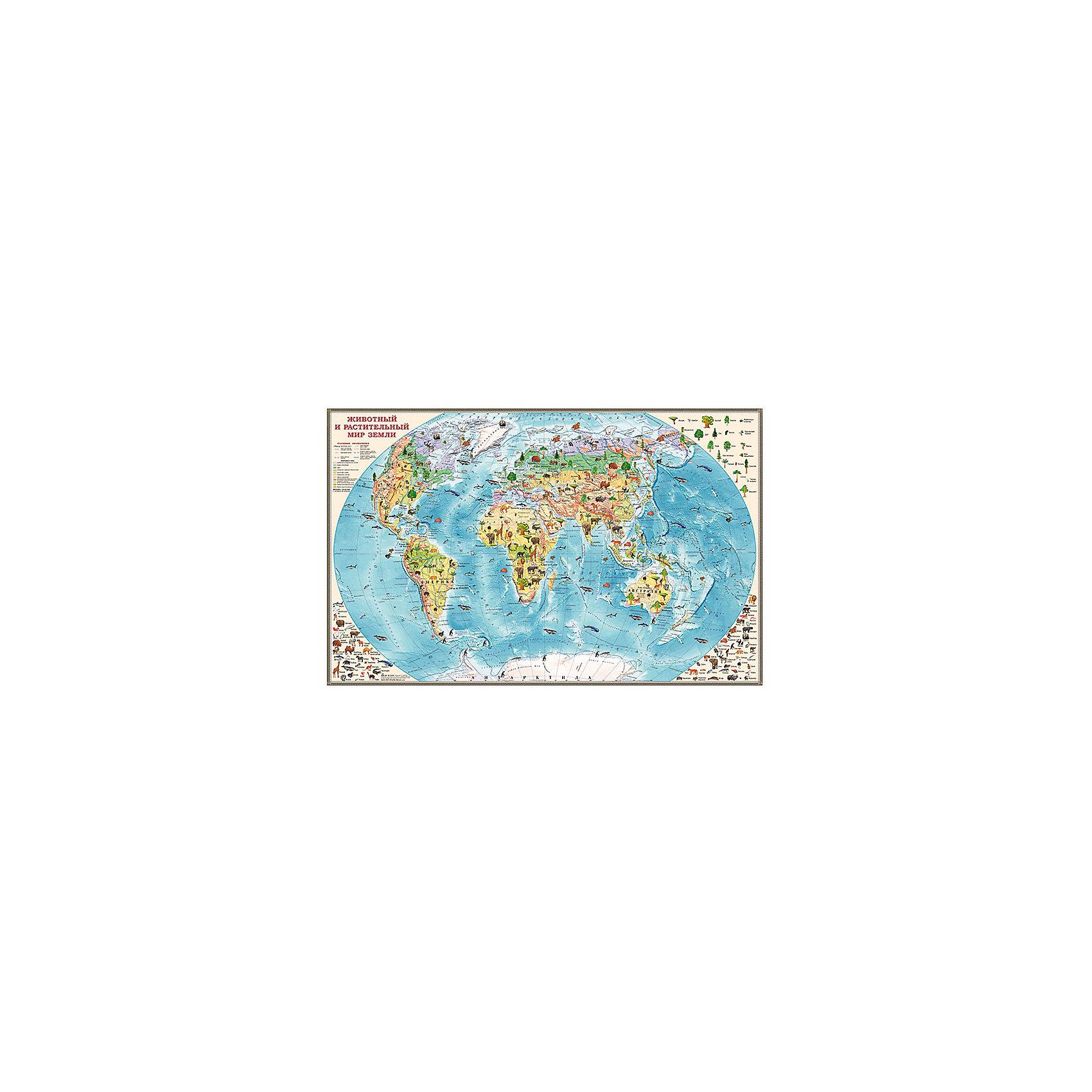 Двусторонняя настольная карта Обитатели ЗемлиЯркая настольная карта мира для детей предназначена для изучения окружающего мира, морей, океанов и континентов, а также их обитателей. Небольшие размеры карты позволяют разместить ее на столе, ламинированная поверхность защитит изображения от случайных повреждений и влаги. На оборотной стороне карты размещено описание о самых больших и необычных животных мира.<br><br>Дополнительная информация:<br><br>- Материал: бумага.<br>- Размер: 58х37 см.<br>- Двусторонняя карта. <br><br>Двустороннюю настольную карту Обитатели Земли можно купить в нашем магазине.<br><br>Ширина мм: 370<br>Глубина мм: 570<br>Высота мм: 370<br>Вес г: 90<br>Возраст от месяцев: 36<br>Возраст до месяцев: 2147483647<br>Пол: Унисекс<br>Возраст: Детский<br>SKU: 4093401