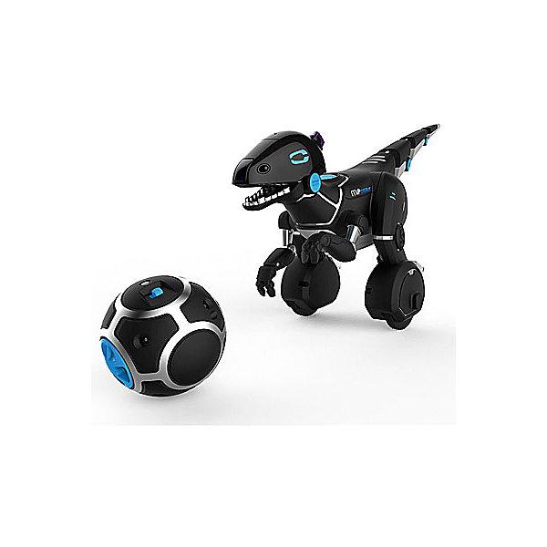Интерактивный робот-динозавр Wowwee МипозаврДругие радиуправляемые игрушки<br>Характеристики:<br><br>• полноценно управляемый робот;<br>• действия: поиск еды, охота, драка с другими роботами;<br>• для управления используется мобильный телефон или шарик-джойстик (трэкбол) с несколькими переключателями;<br>• контроллер выполнен как «силовой шар», имеет 6 положений, которые отвечают за определенный набор действий;<br>• наличие пластиковых стабилизаторов для устойчивости фигурки;<br>• поддерживается одновременное управление несколькими роботами;<br>• бесплатное мобильное приложение для смартфона;<br>• соединение радиоприемника и смартфона производится посредством технологии Bluetooth, которая стабильно функционирует на расстоянии до 15-ти м.<br><br>Дистанционно управлять роботами, устраивать настоящие бои и сражения с участием современных ботов из серии Mip-ами. Поддерживаются одновременное управление целой армией мини-роботов, благодаря чему можно устраивать зрелищные баталии или придумывать собственные сюжеты для игр.<br><br>Мобильное приложение для управления роботом скачивается абсолютно бесплатно, а также автоматически обновляется по мере выхода новых версий.<br><br>Робот Мипозавр, Wowwee можно купить в нашем интернет-магазине.<br>Ширина мм: 488; Глубина мм: 253; Высота мм: 195; Вес г: 1785; Возраст от месяцев: 72; Возраст до месяцев: 144; Пол: Мужской; Возраст: Детский; SKU: 4122551;
