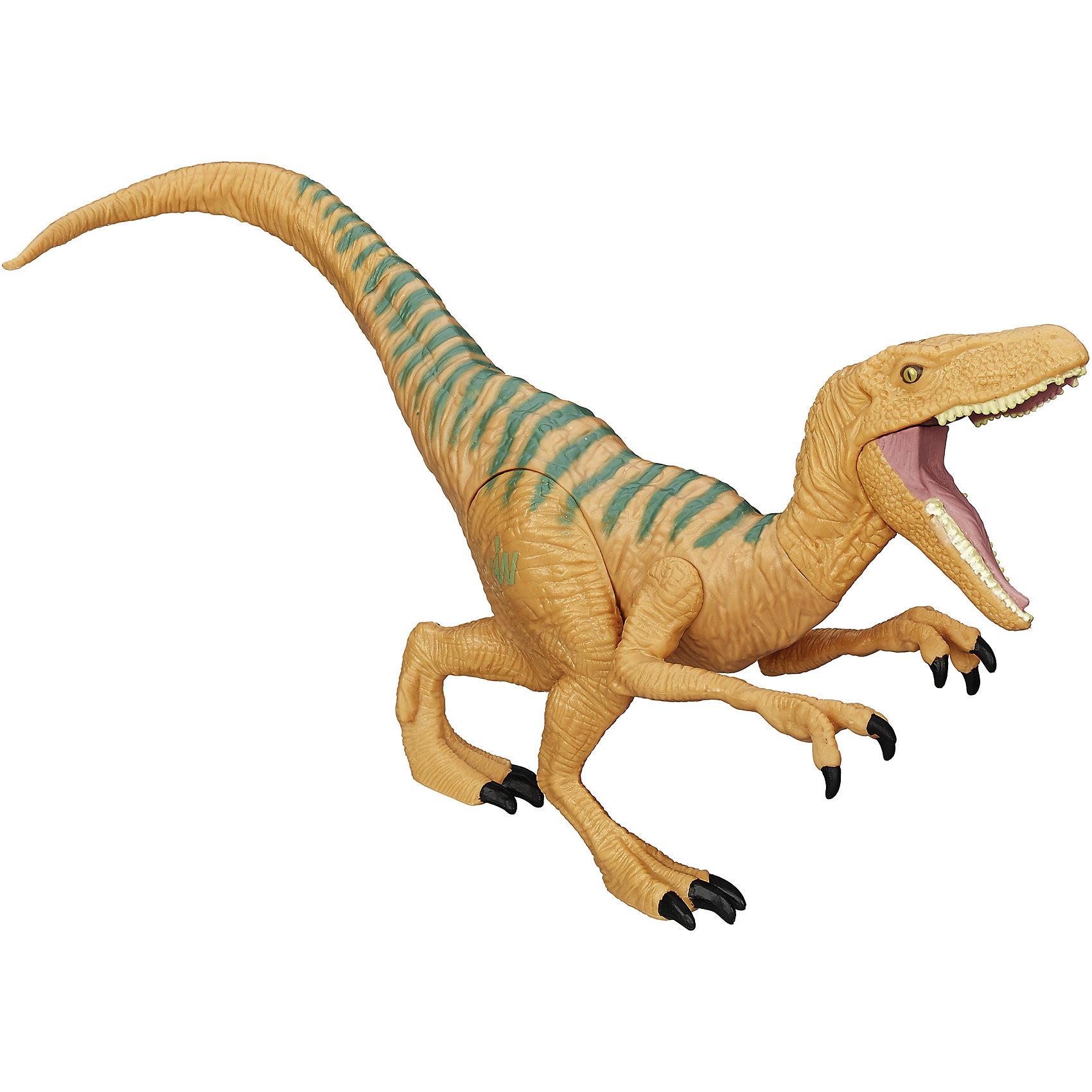 Титаны Динозавры: Велоцираптор Эхо, Мир Юрского ПериодаФигурки Динозавров Мира Юрского Периода высотой 35 см. из популярной линейки Титаны по привлекательно цене.<br><br>Ширина мм: 152<br>Глубина мм: 279<br>Высота мм: 76<br>Вес г: 275<br>Возраст от месяцев: 48<br>Возраст до месяцев: 1188<br>Пол: Мужской<br>Возраст: Детский<br>SKU: 4163210
