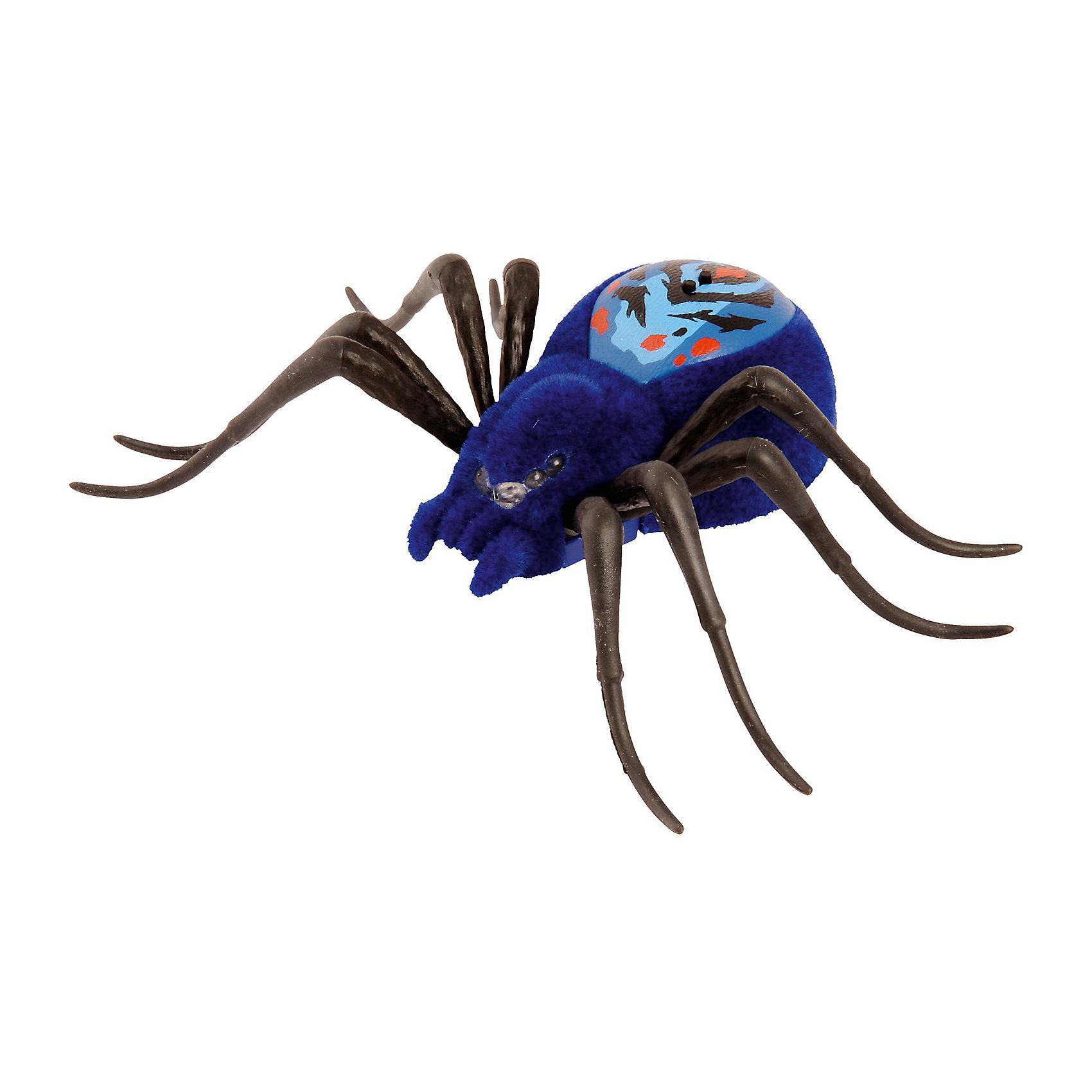 Интерактивный паучок Wild PetsНовая линейка от Moose заинтригует детей, которые хотят познакомиться с различными животными. Если раньше компания выпускала интерактивные игрушки только в виде домашних питомцев, то теперь настала очередь диких зверей и насекомых.  Интерактивный паук от Moose имеет 3 режима игры. Для того чтобы включить игрушку или перевести ее из одного режима в другой достаточно провести по спине паука: там расположены два сенсора, до которых нужно дотронуться. Глаза паука загорятся синим, он начнет ползать и искать укромные места, для того чтобы спрятаться.  Во втором режиме глаза паука загорятся зеленым цветом. Игрушка начинает активнее передвигаться и исследовать окружающую территорию. В последнем режиме паук ведет себя более агрессивно. Он передвигается быстрее,  может атаковать, а его глаза загораются красным светом. Для того, чтобы перевести его в обычные режимы достаточно еще несколько раз провести по сенсорам на спине. До тех пор пока глаза игрушки не загорятся синим или зеленым светом.<br><br>Дополнительная информация:<br><br>- Материал: пластик, текстиль, металл.<br>- Размер упаковки: 22х18х7,5 см.<br>- Цвет паука: синий.<br>- Элемент питания: 3 батарейки AG13 / LR44 (в комплекте).<br><br>Интерактивного паучка Wild Pets (Вилд Петс), можно купить в нашем магазине.<br><br>Ширина мм: 220<br>Глубина мм: 182<br>Высота мм: 66<br>Вес г: 125<br>Возраст от месяцев: 60<br>Возраст до месяцев: 108<br>Пол: Унисекс<br>Возраст: Детский<br>SKU: 4172244