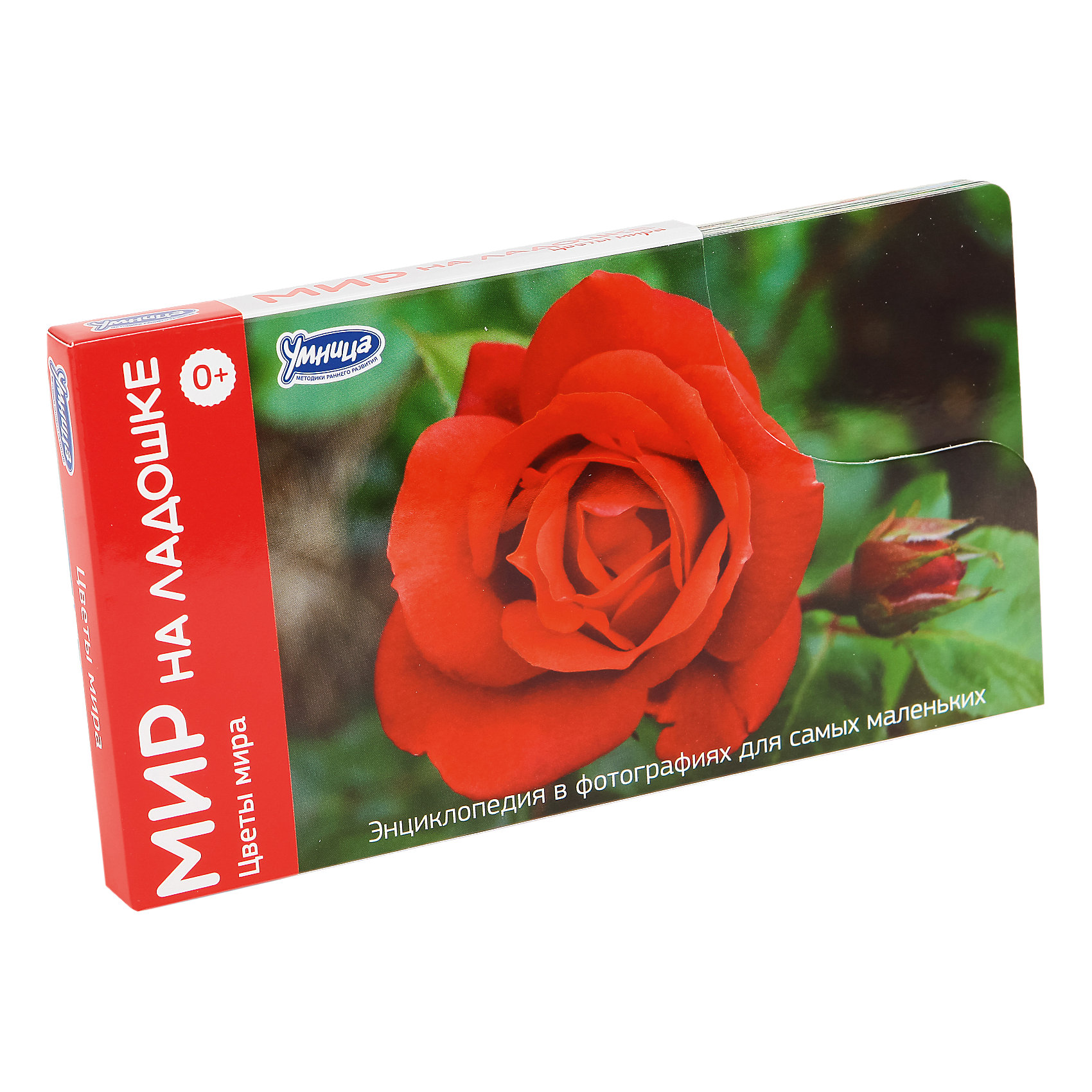 """Умница Комплект карточек """"Мир на ладошке-3. Цветы мира"""""""