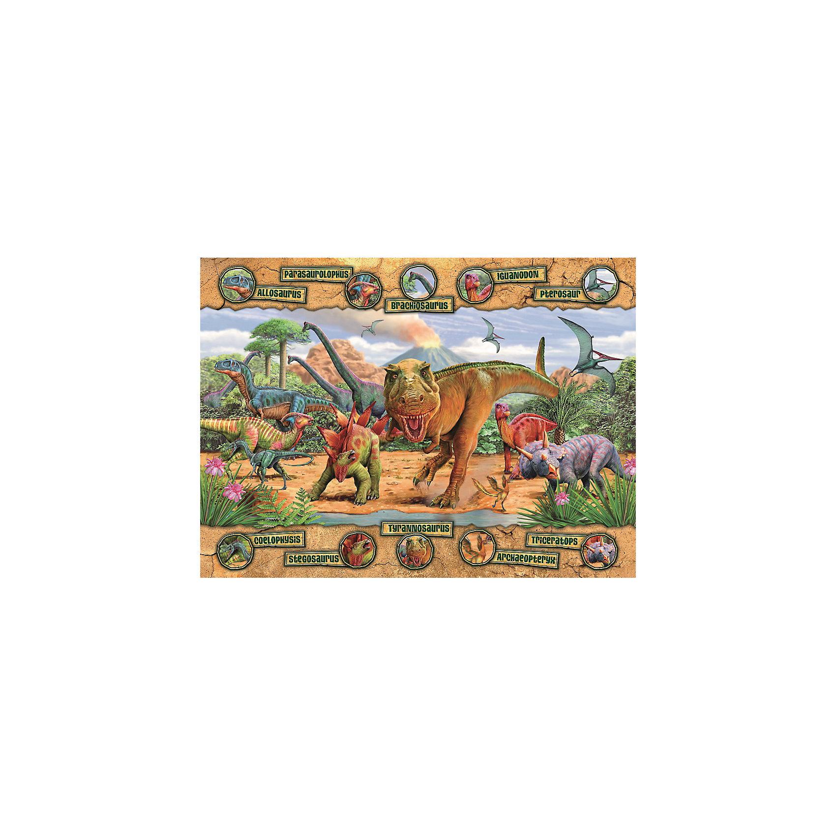 Пазл «Динозавры» XXL 100 деталей, RavensburgerПазлы для малышей<br>Пазл «Динозавры» XXL 100 деталей, Ravensburger (Равенсбургер) – яркий детский пазл, который понравится всем членам семьи.<br>Собрав пазл «Динозавры» ребенок получит замечательную картинку с изображением динозавров и названиями их основных видов. Пазл состоит из 100 качественных крупных картонных деталей, которые не ломаются, не подвергаются деформации при сборке. Каждая деталь имеет свою форму и подходит только на свое место. Элементы пазла идеально соединяются друг с другом, не отслаиваются с течением времени. Матовая поверхность исключает отблески. Пазлы Ravensburger (Равенсбургер)- это высочайшее качество картона и полиграфии. Пазлы - замечательная развивающая игра для детей. Собирание пазла развивает у ребенка мелкую моторику рук, тренирует наблюдательность, логическое мышление, знакомит с окружающим миром, с цветом и разнообразными формами, учит усидчивости и терпению, аккуратности и вниманию.<br><br>Дополнительная информация:<br><br>- Количество деталей: 100 шт.<br>- Размер картинки: 49 х 36 см.<br>- Материал: картон<br>- Размер упаковки: 34 х 23 х 4 см.<br>- Вес: 567 гр.<br><br>Пазл «Динозавры» XXL 100 деталей, Ravensburger (Равенсбургер) можно купить в нашем интернет-магазине.<br><br>Ширина мм: 340<br>Глубина мм: 230<br>Высота мм: 40<br>Вес г: 567<br>Возраст от месяцев: 72<br>Возраст до месяцев: 144<br>Пол: Унисекс<br>Возраст: Детский<br>Количество деталей: 100<br>SKU: 4214565