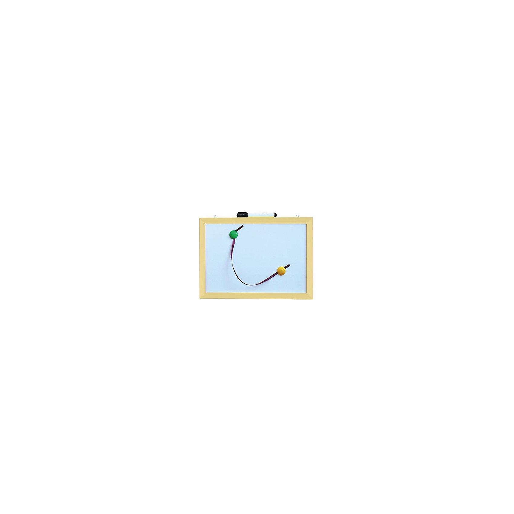 Магнитно-маркерная доска 30*40 см с аксессуарамиДоски для рисования<br>Магнитно-маркерная доска 30*40 см с аксессуарами - универсальный уголок для рисования и обучения.<br>Функциональная доска в деревянной раме прекрасно подойдет для повседневных занятий и рисования. Модель имеет возможность крепления на стену. В комплект входят 2 ярких магнита и специальный маркер. Такая замечательная доска пригодится для детских рисунков, составления первых слов и решения самых простых примеров. Маркер легко стирать с доски, что очень удобно для обучающих занятий.<br><br>Дополнительная информация:<br><br>- Размер: 30 х 40 х 2 см<br>- Материал: пластик, дерево<br>- Рама неокрашенная<br>- Комплектация: доска, маркер, магниты (2 шт.)<br>- Вес: 410 гр.<br><br>Магнитно-маркерную доску 30*40 см с аксессуарами можно купить в нашем интернет-магазине.<br><br>Ширина мм: 400<br>Глубина мм: 20<br>Высота мм: 300<br>Вес г: 410<br>Возраст от месяцев: 36<br>Возраст до месяцев: 192<br>Пол: Унисекс<br>Возраст: Детский<br>SKU: 4214644