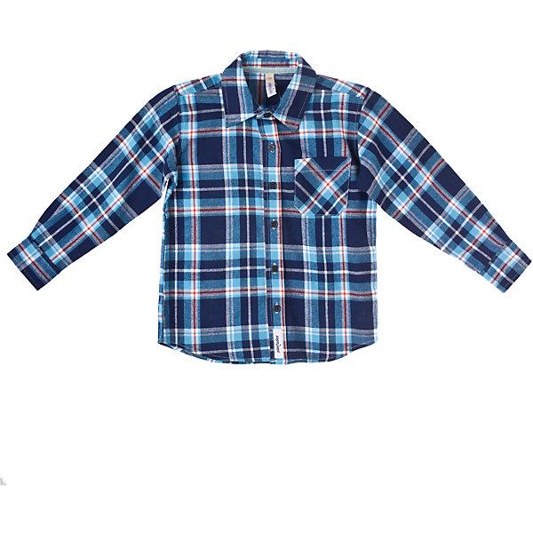 Рубашка для мальчика PlayTodayБлузки и рубашки<br>Сорочка для мальчика PlayToday Классическая байковая рубашка в клетку на пуговицах. Отложной воротничок, манжеты на пуговицах. На полочке - функциональный накладной карман. Состав: 100% хлопок<br><br>Ширина мм: 281<br>Глубина мм: 70<br>Высота мм: 188<br>Вес г: 295<br>Цвет: синий<br>Возраст от месяцев: 24<br>Возраст до месяцев: 36<br>Пол: Мужской<br>Возраст: Детский<br>Размер: 98,104,116,122,110,128<br>SKU: 4227905