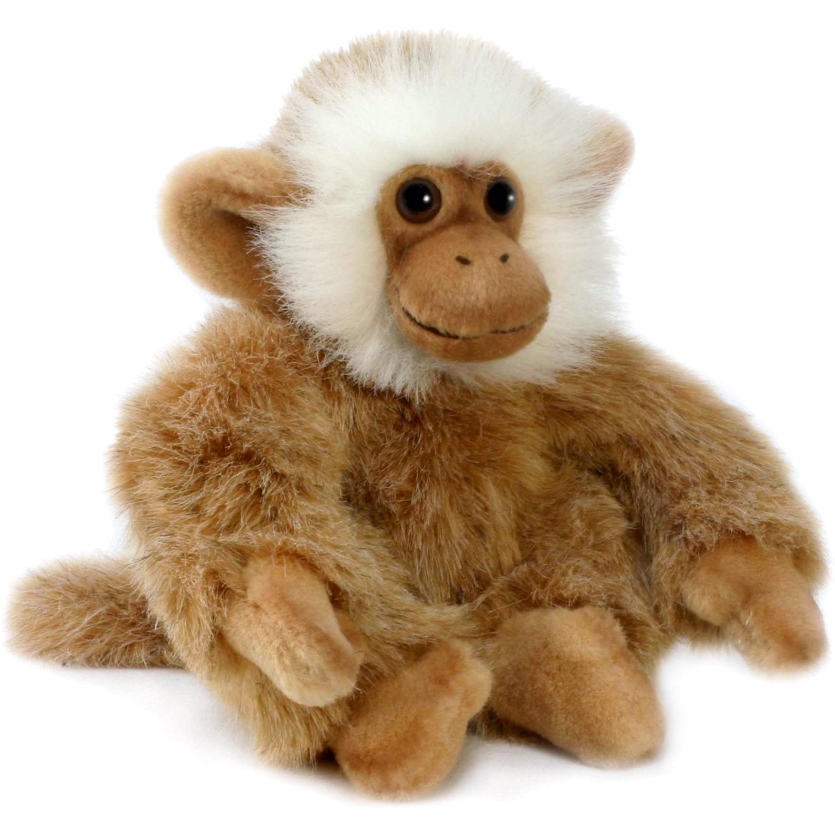 Обезьянка, 20 см, HansaМягкие игрушки животные<br>Обезьянка, Hansa  - чудесная мягкая игрушка, отличающаяся высоким качеством исполнения и реалистичностью, это настоящий маленький друг, которому будут рады дети любого возраста. Торговая марка Ханса пользуется большой популярностью во всем мире и завоевала множество международных призов. Все зверюшки шьются и набиваются вручную, в точности копируя оригинал. Благодаря искусной проработке всех деталей и тщательно соблюденным пропорциям игрушка выглядит как настоящий живой детеныш обезьянки. У нее очень мягкая, приятная на ощупь шерстка из высококачественного искусственного меха, лапки выполнены из нежного плюша. Трогательная мордочка с большими глазами, обрамленная белой шерсткой, никого не оставит равнодушным. Проволочный каркас внутри игрушки делает ее прочной и устойчивой и позволяет придавать различные позы. Игрушка выполнена из гипоаллергенных материалов и совершенно безопасна для детей. <br><br>Дополнительная информация:<br><br>- Материал: искусственный мех, плюш, пластик, металлический гибкий каркас. <br>- Высота игрушки: 20 см.<br>- Размер игрушки: 15 х 17 х 20 см.<br>- Размер упаковки: 26 х 16 х 10 см.<br>- Вес: 110 гр.<br><br>Обезьянку, Hansa  можно купить в нашем интернет-магазине.<br><br>Ширина мм: 150<br>Глубина мм: 170<br>Высота мм: 200<br>Вес г: 110<br>Возраст от месяцев: 36<br>Возраст до месяцев: 144<br>Пол: Унисекс<br>Возраст: Детский<br>SKU: 4230123