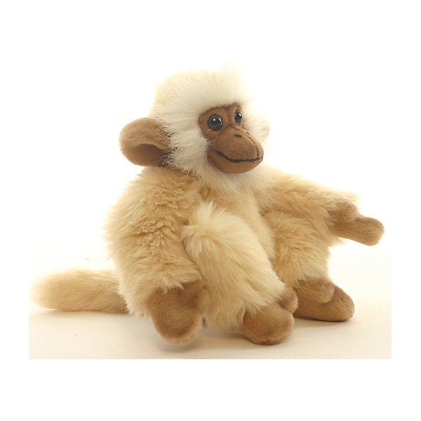 Обезьянка, 20 см, HansaМягкие игрушки животные<br>Обезьянка, Hansa  - чудесная мягкая игрушка, отличающаяся высоким качеством исполнения и реалистичностью, это настоящий маленький друг, которому будут рады дети любого возраста. Торговая марка Ханса пользуется большой популярностью во всем мире и завоевала множество международных призов. Все зверюшки шьются и набиваются вручную, в точности копируя оригинал. Благодаря искусной проработке всех деталей и тщательно соблюденным пропорциям игрушка выглядит как настоящий живой детеныш обезьянки. У нее очень мягкая, приятная на ощупь бежевая шерстка из высококачественного искусственного меха, лапки выполнены из нежного плюша. Трогательная мордочка с большими глазами, обрамленная белой шерсткой, никого не оставит равнодушным. Проволочный каркас внутри игрушки делает ее прочной и устойчивой и позволяет придавать различные позы. Игрушка выполнена из гипоаллергенных материалов и совершенно безопасна для детей. <br><br>Дополнительная информация:<br><br>- Материал: искусственный мех, плюш, наполнитель, пластик, металлический гибкий каркас. <br>- Размер игрушки: 20 см.<br>- Размер упаковки: 15 х 17 х 20 см.<br>- Вес: 110 гр.<br><br>Обезьянку, Hansa, можно купить в нашем интернет-магазине.<br>Ширина мм: 150; Глубина мм: 170; Высота мм: 200; Вес г: 110; Возраст от месяцев: 36; Возраст до месяцев: 144; Пол: Унисекс; Возраст: Детский; SKU: 4230124;