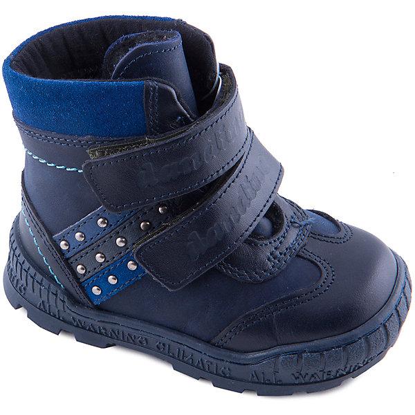 Ботинки для мальчика DandinoБотинки<br>Ботинки для мальчика Dandino - прекрасный вариант на холодную погоду. Модель застегивается на липучки, дополнена усиленным задником и носом, имеет толстую рифленую подошву, обеспечивающую тепло и безопасность, декорирована прострочкой и полосками кожи с металлическими элементами.  Ботинки выполнены из натуральной кожи, подкладка изготовлена из меха, красивый и практичный вариант для вашего ребёнка!<br><br>Дополнительная информация:<br><br>- Сезон: осень/зима.<br>- Температурный режим: от -5 до - 20<br>- Тип застежки: липучка <br>- Декоративные элементы:  <br>Параметры для размера 20<br>- Толщина подошвы: 1,5 см.<br>- Высота каблука: 2 см.<br>Состав: верх-натуральная кожа 100%, подкладка -  мех 100%, подошва-ТЭП.<br><br>Ботинки для мальчика Dandino (Дандино) можно купить в нашем магазине.<br>Ширина мм: 257; Глубина мм: 180; Высота мм: 130; Вес г: 420; Цвет: синий; Возраст от месяцев: 21; Возраст до месяцев: 24; Пол: Мужской; Возраст: Детский; Размер: 24,22,23,25,30,28,27,26,20,29,21; SKU: 4232946;