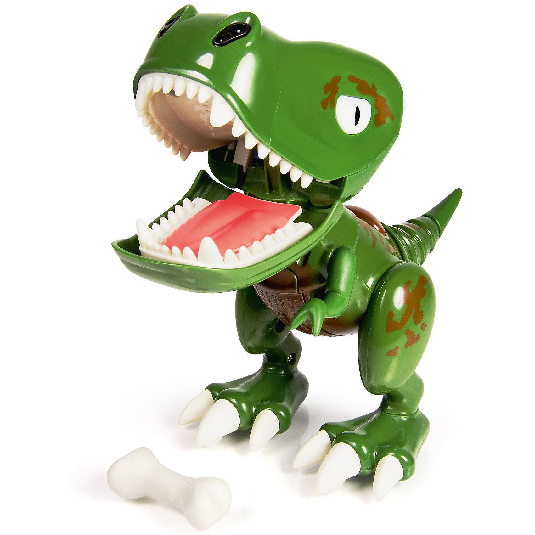 Интерактивный детёныш динозавра Z-Rex, Dino Zoomer, Spin MasterДинозавры и драконы<br>Настоящий детеныш динозавра у вас дома! Дети придут в восторг от такой замечательной игрушки! Глаза динозавра меняют цвет в зависимости от настроения и режима игры. Малыш выглядит и ведет себя как настоящий динозавр, он чавкает, рычит, сопит, смеётся.  Потяни его за хвост, и он разозлится. Поиграй с Дино - в комплекте  идёт специальный аксессуар. Бросай его в рот Дино. Если попадешь, он закроет рот, если промахнешься, Дино будет над тобой смеяться. Не дай ему откусить твой палец – игра на скорость реакции: успей вынуть палец изо рта Дино, пока он тебя не укусил. Дино еще маленький и не научился ходить: передвигай его рукой сам. Но зато малыш - динозавр уже умеет защищать себя и своего хозяина: он будет рычать, если что-то будет приближаться близко к нему.  <br><br>Дополнительная информация:<br><br>- Материал: пластик. <br>- Элемент питания: 3 ААА батарейки (не входят в комплект)<br>- Световые и звуковые эффекты.<br>- Встроенный ИК датчик.<br>- Цвет глаз изменяется.<br>- Косточка в комплекте.<br><br>Интерактивного детёныша динозавра Dino Zoomer, Spin Master (Спин Мастер), можно купить в нашем магазине.<br><br>Ширина мм: 139<br>Глубина мм: 182<br>Высота мм: 261<br>Вес г: 489<br>Возраст от месяцев: 36<br>Возраст до месяцев: 108<br>Пол: Унисекс<br>Возраст: Детский<br>SKU: 4241258