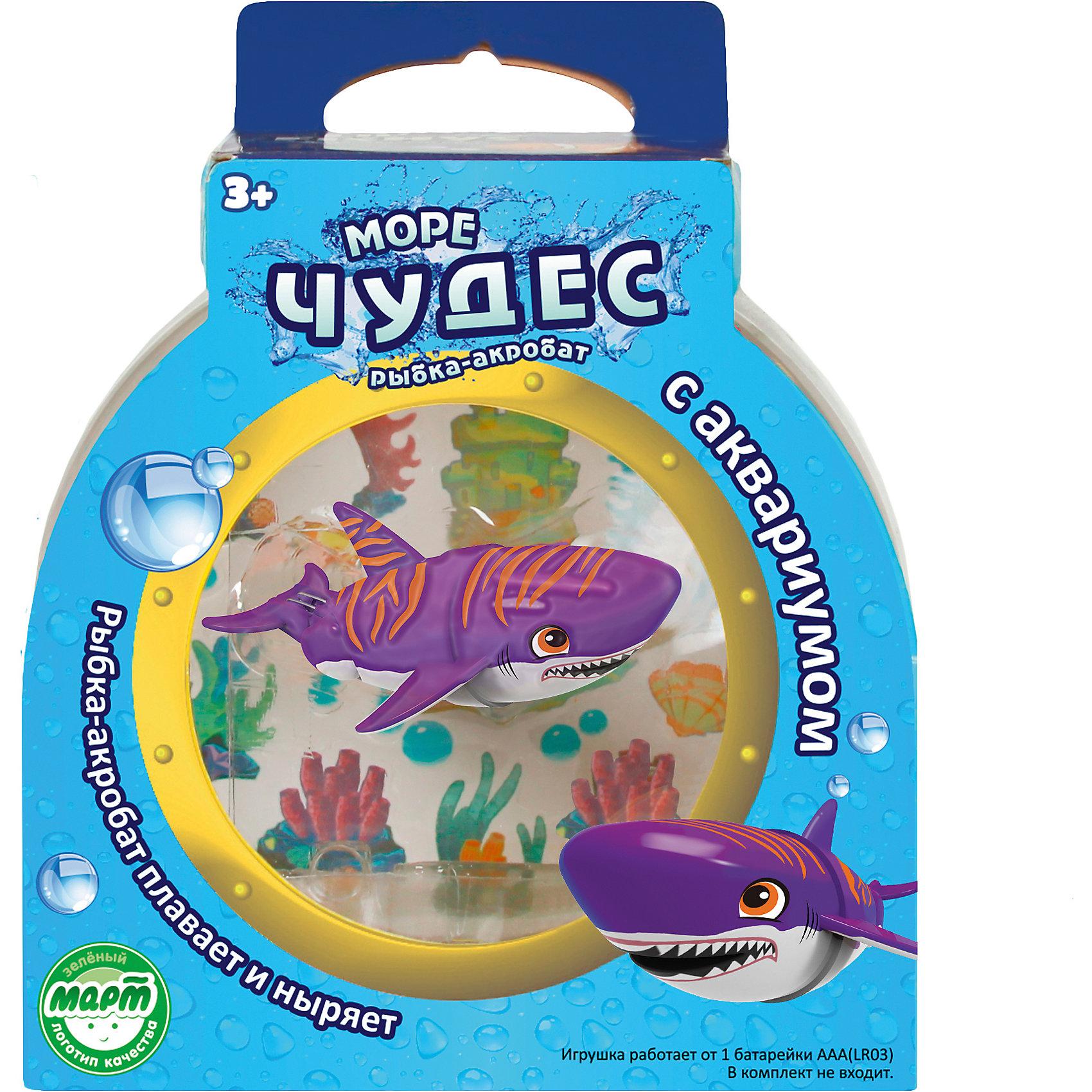 Акула-акробат Тайгер с аквариумом, Море чудесВаш ребенок мечтает о рыбке? С этим замечательным набором мечта станет реальностью! Озорная акула-акробат Тайгер так похожа на настоящего морского обитателя! Она плавает за счёт микро-моторчика в хвосте, траектория движений зависит от наклона хвоста. Тайгер виртуозно умеет нырять на глубину и быстро подниматься на поверхность. Очаровательная акула подарит детям множество положительных эмоция и улыбок! <br><br>Дополнительная информация:<br><br>- Размер акулы: 9 см.<br>- Размер аквариума: 16х16х10 см. <br>- Материал: пластик.<br>- Элемент питания: 1 батарейка ААА (в комплект не входит).<br><br>Акулу – акробата Тайгера с аквариумом, Море чудес, можно купить в нашем магазине.<br><br>Ширина мм: 160<br>Глубина мм: 110<br>Высота мм: 200<br>Вес г: 250<br>Возраст от месяцев: 36<br>Возраст до месяцев: 72<br>Пол: Унисекс<br>Возраст: Детский<br>SKU: 4252053