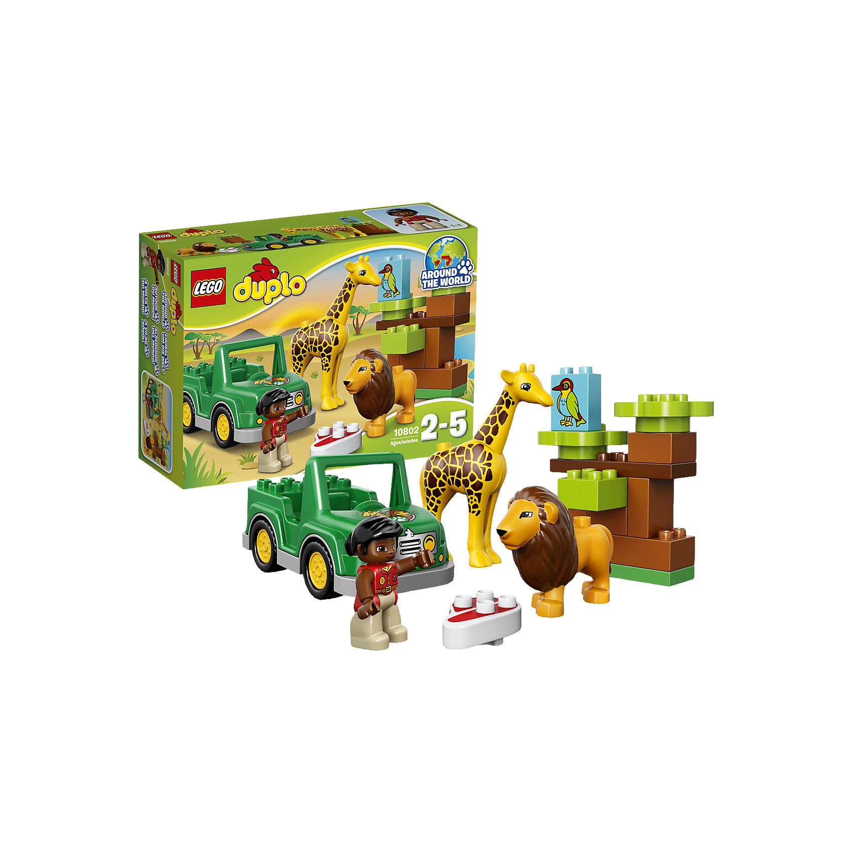 LEGO DUPLO 10802: Вокруг света: АфрикаLEGO DUPLO (ЛЕГО Дупло) 10802: Вокруг света: Африка непременно заинтересует любознательных малышей. Вашему ребенку предстоит отправиться в увлекательное путешествие в жаркую Африку и познакомиться с местными обитателями - забавным жирафом и добродушным львом. Симпатичная смотрительница заповедника внимательно следит за здоровьем своих питомцев и каждый день отправляется на джипе проведать их. Сборное дерево с блоком-птичкой развивают основные навыки конструирования и создает ландшафт для веселых игр и приключений.<br><br>ЛЕГО Дупло - серия конструкторов для малышей, которую отличают крупные яркие детали со скругленными безопасными углами и многообразие игровых сюжетов, это и животные, и растения, и машинки, и сказочные персонажи. <br><br>Дополнительная информация:<br><br>- Игра с конструктором LEGO (ЛЕГО) развивает мелкую моторику ребенка, фантазию и воображение, учит его усидчивости и внимательности.<br>- Количество деталей: 18.<br>- Количество минифигур: 3 (смотрительница, лев, жираф).<br>- Серия: LEGO DUPLO (ЛЕГО Дупло). <br>- Материал: пластик.<br>- Размер упаковки: 26 х 9 х 19 см.<br>- Вес: 0,48 кг.<br><br>Конструктор LEGO DUPLO (ЛЕГО Дупло) 10802: Вокруг света: Африка можно купить в нашем интернет-магазине.<br><br>Ширина мм: 263<br>Глубина мм: 190<br>Высота мм: 91<br>Вес г: 472<br>Возраст от месяцев: 24<br>Возраст до месяцев: 60<br>Пол: Унисекс<br>Возраст: Детский<br>SKU: 4259170