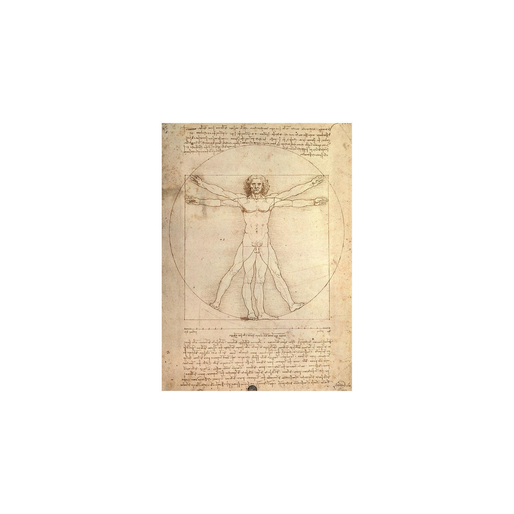 Ravensburger Пазл «Витрувианский человек» 1000 деталей, Ravensburger пазл 73 5 x 48 8 1000 элементов printio железный человек