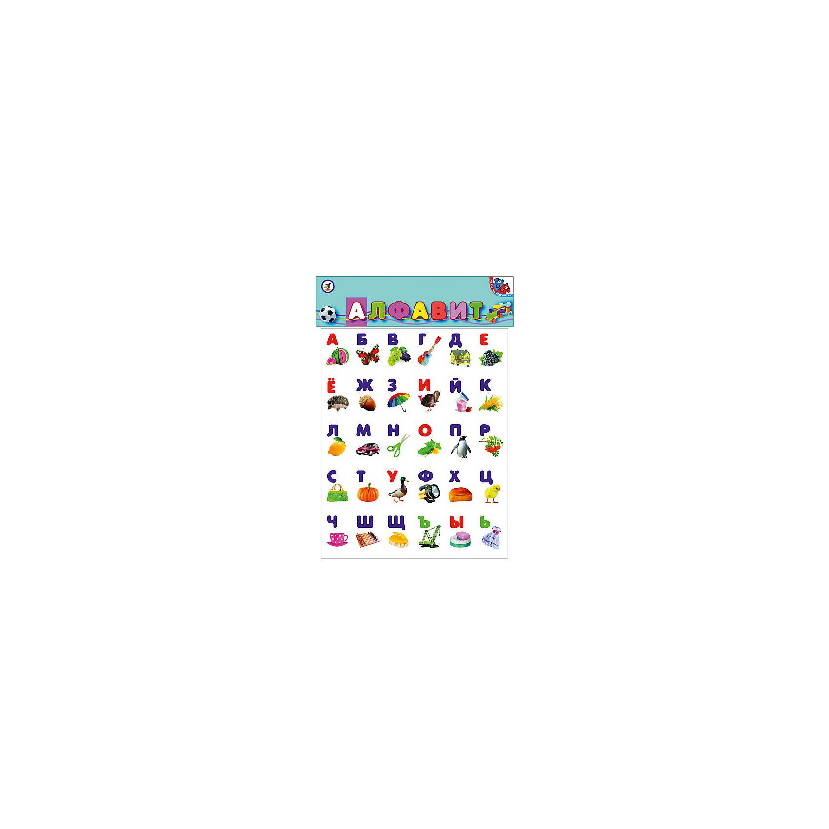 Алфавит на магнитеУчимся читать<br>С этим магнитным алфавитом ваш ребенок без труда выучит буквы и сможет составлять свои первые слова. На лицевой стороне карточек изображена буква с изображением. Карточки можно прикрепить к любой металлической поверхности, составлять из них слова, слоги, придумывать различные игры. Яркие, красочные картинки обязательно привлекут внимание малышей. Простые и понятные рисунки создают нужные зрительные образы, что способствует лучшему запоминанию букв. <br><br>Дополнительная информация:<br><br>- Материал: картон, бумага, магниторезина.<br>- Размер упаковки: 29х36 см.<br>- Яркие картинки. <br><br>Алфавит на магните можно купить в нашем магазине.<br><br>Ширина мм: 500<br>Глубина мм: 25<br>Высота мм: 525<br>Вес г: 500<br>Возраст от месяцев: 48<br>Возраст до месяцев: 84<br>Пол: Унисекс<br>Возраст: Детский<br>SKU: 4293361
