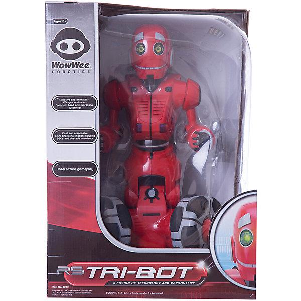 Робот ТрайБот, WowWeeРоботы<br>Tribot - новинка от Woowee. Робот передвигается на трех больших колесах: ему не страшны неровности, он с легкостью преодолеет препятствия, недоступные для обычных, шагающих роботов. Tribot свободно перемещается в любую сторону, даже по диагонали, может вращаться на месте. С помощью специально кнопки на пульте, роботом можно управлять, просто наклоняя сам пульт. Робот отзывается на команды, подаваемые с пульта ДУ или же на нажатие на голову.<br><br>Дополнительная информация:<br><br>- Материал: пластик, металл.<br>- Размер: 58х36 см.<br>- Свободно перемещается в любую сторону.<br>- Датчики наклона.<br>- Регулировка громкости.<br>- Элемент питания: 3 ААА батарейки, 8 АА батареек (не входят в комплект).<br><br>Робота ТрайБот, WowWee, можно купить в нашем магазине.<br><br>Ширина мм: 260<br>Глубина мм: 300<br>Высота мм: 430<br>Вес г: 2400<br>Возраст от месяцев: 72<br>Возраст до месяцев: 144<br>Пол: Мужской<br>Возраст: Детский<br>SKU: 4298957