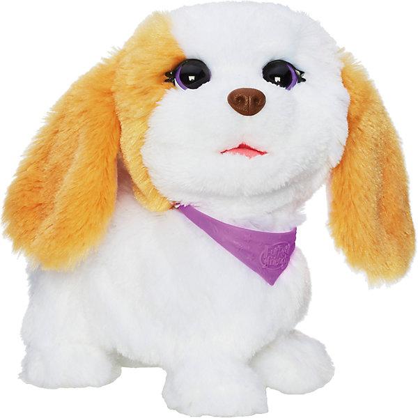 Озорные зверята - Щенок, FurRealИнтерактивные мягкие игрушки<br>Озорные зверята, FurReal, - это интерактивная игрушка, которая станет милым и верным другом для своего маленького хозяина.<br>Ваш ребенок мечтает о красивом маленьком домашнем питомце, но нет возможности исполнить его желание? Интерактивная игрушка FurReal Friends Озорные зверята: Щенок, выполненная в виде очаровательного пушистого белого с рыжими пятнами щеночка в фиолетовом ошейнике с добрыми, доверчивыми глазками-бусинами, станет для него отличным подарком. Если поставить щенка на пол и нажать на спинку, то он начнет кружиться, подпрыгивать и лаять, словно настоящий песик, а если его обнять, то он станет издавать довольные звуки, показывая, как ему нравится объятия и внимание. Щенок приятен на ощупь, его так и хочется гладить. Игрушка принесет исключительно положительные эмоции и заставит всех вокруг улыбаться! Блок с батарейками и микросхемами надежно спрятан внутри игрушки. Благодаря такой игрушке ребенок научится заботиться о братьях наших меньших, он будет проявлять всю свою нежность, ласку и заботу к животному. Игрушка изготовлена из высококачественных, нетоксичных материалов.<br><br>Дополнительная информация:<br><br>- Размер игрушки: 17 см.<br>- Цвет: рыжий, белый<br>- Батарейки: 3 х AA / LR6 1.5V пальчиковые (входят в комплект)<br>- Материал: пластмасса, искусственный мех, текстиль<br>- Упаковка: картонная коробка<br>- Размер упаковки: 14 х 21,6 х 22,2 см.<br>- Вес: 794 гр.<br><br>Озорных зверят, FurReal, можно купить в нашем интернет-магазине.<br><br>Ширина мм: 140<br>Глубина мм: 216<br>Высота мм: 222<br>Вес г: 794<br>Возраст от месяцев: 48<br>Возраст до месяцев: 108<br>Пол: Женский<br>Возраст: Детский<br>SKU: 4312929