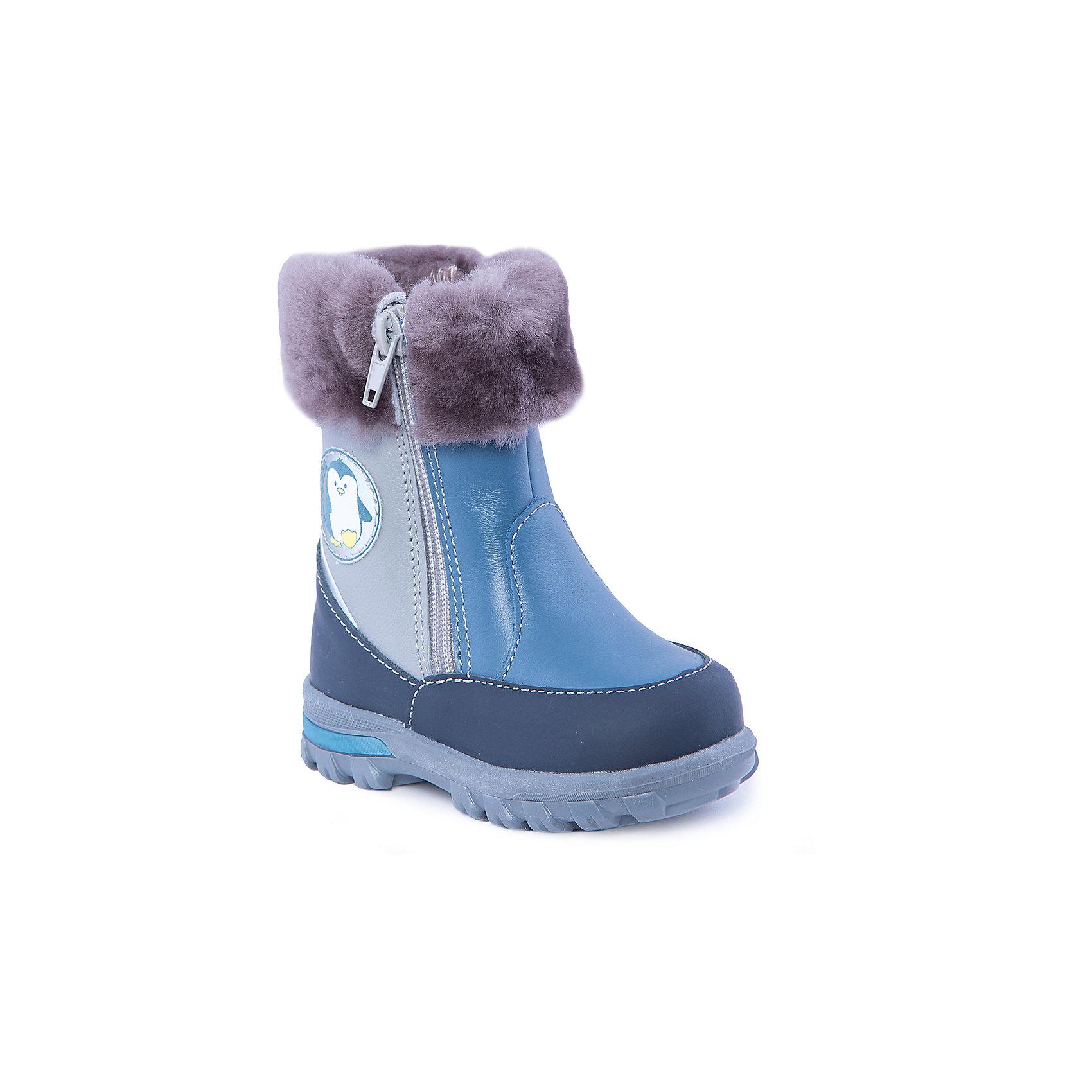 Сапоги для мальчика КотофейСапоги для мальчика от известного российского бренда Котофей<br><br>Модные и удобные сапоги помогут защитить детские ножки от сырости и холода. Они легко надеваются, комфортно садятся по ноге.<br><br>Особенности модели: <br><br>- цвет - синий, серый;<br>- аппликация с пингвином сбоку;<br>- меховые отвороты;<br>- верх – натуральная кожа;<br>- комфортная колодка;<br>- подкладка утепленная;<br>- вид крепления – клеевой;<br>- защита пальцев;<br>- амортизирующая устойчивая подошва;<br>- застежка - молния.<br><br>Дополнительная информация:<br><br>Температурный режим: <br><br>от 0° С до -25° С<br><br>Состав:<br>верх – натуральная кожа;<br>подкладка - овчина;<br>подошва - ТЭП.<br><br>Сапоги для мальчика Котофей можно купить в нашем магазине.<br><br>Ширина мм: 257<br>Глубина мм: 180<br>Высота мм: 130<br>Вес г: 420<br>Цвет: синий<br>Возраст от месяцев: 12<br>Возраст до месяцев: 15<br>Пол: Мужской<br>Возраст: Детский<br>Размер: 21,22,23,24<br>SKU: 4315184