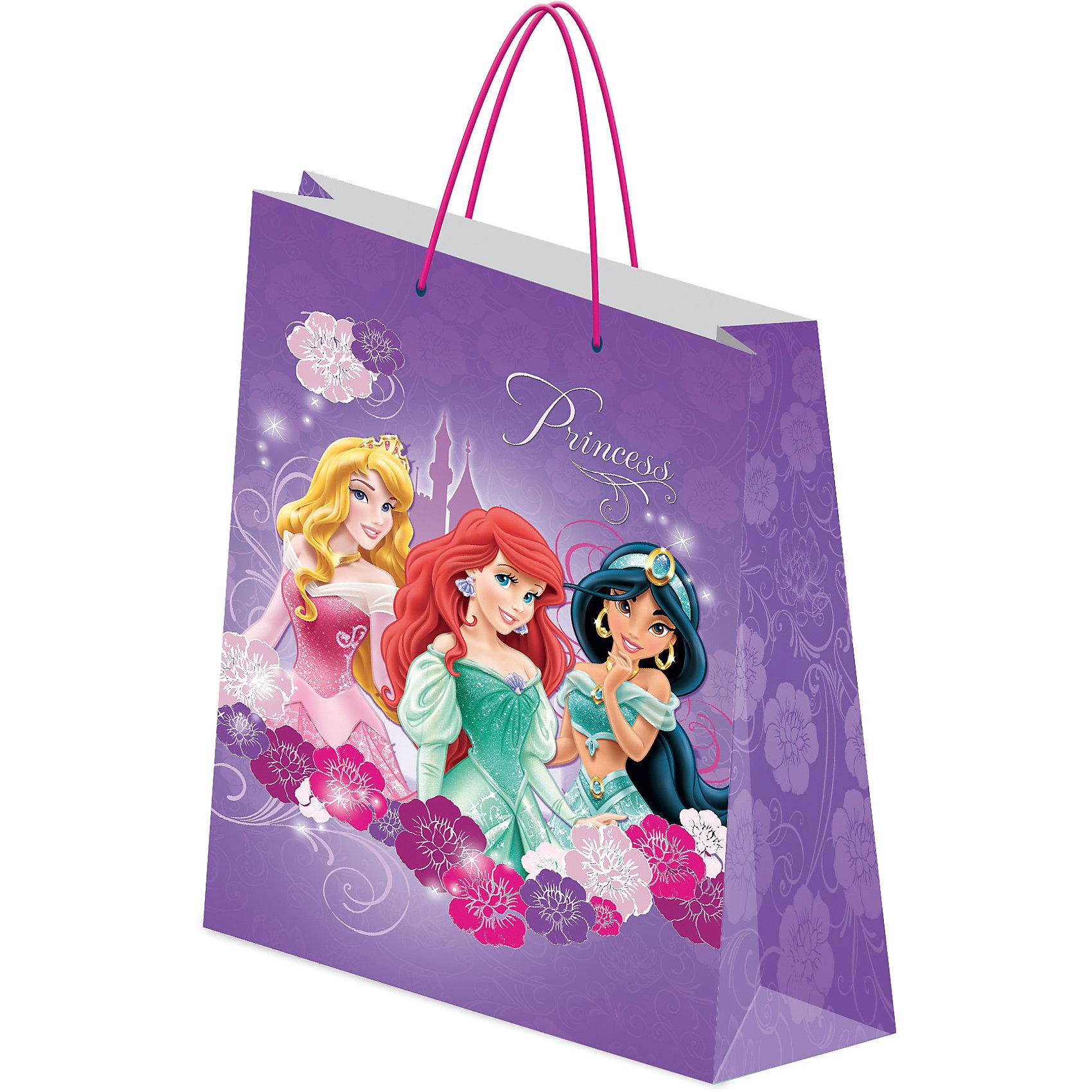 Академия групп Подарочный пакет Принцессы Дисней 33*43*10 см академия групп пакет бумажный подарочный 33 43 10 см