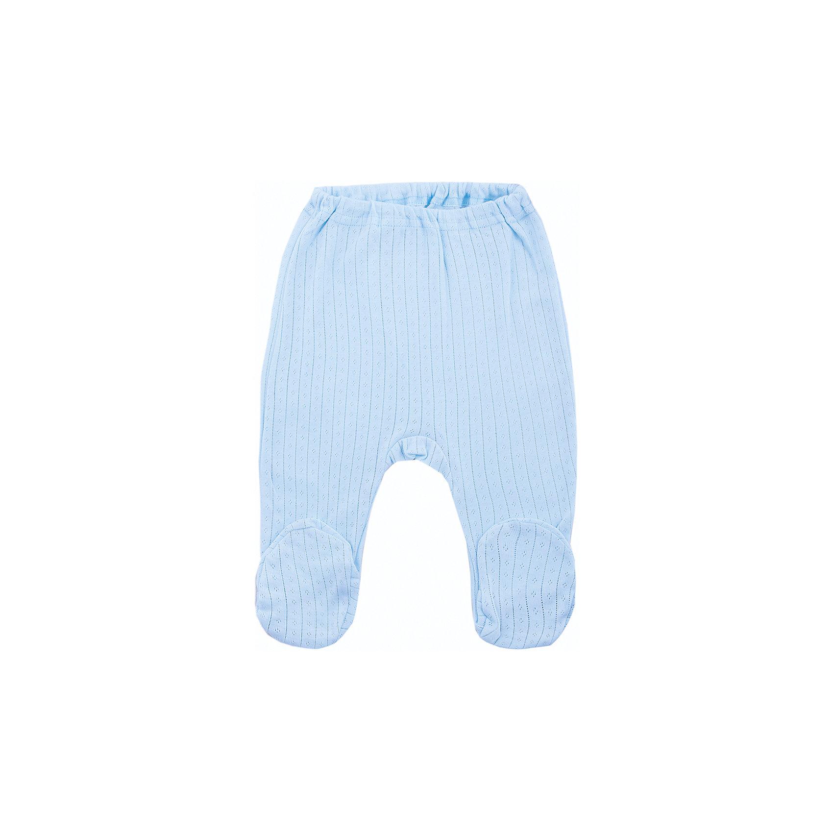 Ползунки для мальчика Soni KidsПолзунки и штанишки<br>Ползунки для мальчика от популярной марки Soni Kids<br><br>Симпатичные удобные ползунки созданы специально для самых маленьких. Они обеспечат ребенку удобство, не будут натирать,  а также позволят коже дышать.<br><br>Особенности модели:<br><br>- цвет - голубой;<br>- материал - натуральный ажурный хлопок-рибана;<br>- швы наружу;<br>- мягкая окантовка;<br>- пояс  - мягкая резинка.<br><br>Дополнительная информация:<br><br>Состав: 100% хлопок (рибана)<br><br>Габариты:<br><br>длина от пояса до пятки - 38 см.<br><br>*соответствует размеру 62<br><br>Ползунки для мальчика от популярной марки Soni Kids (Сони Кидс) можно купить в нашем магазине.<br><br>Ширина мм: 157<br>Глубина мм: 13<br>Высота мм: 119<br>Вес г: 200<br>Цвет: голубой<br>Возраст от месяцев: 3<br>Возраст до месяцев: 6<br>Пол: Мужской<br>Возраст: Детский<br>Размер: 68,56,74,62<br>SKU: 4323297