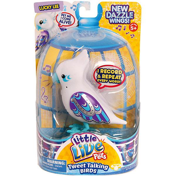 Говорящая птичка Lucky Lee, Little Live Pets, MooseИнтерактивные животные<br>Говорящая птичка Lucky Lee, Little Live Pets, Moose  – это интерактивная игрушка, которая вызовет восторг у вашего ребенка.<br>Лаки Ли (Lucky Lee) — это говорящая птичка из четвертой серии Little Live Pets, разработанной австралийской компанией Moose . Птички стали более красивыми. Их крылья переливаются и блестят на солнце. Если погладить птичку по голове - она начнет весело чирикать. В арсенале птички порядка 30 мелодий. Кроме того, она способна запоминать короткие фразы и слова, и воспроизводить их на свой манер. Когда птичка щебечет или произносит слова, у нее двигается нижняя часть клювика. Все это делает игрушечную птичку похожей на настоящую. На голове Ли резной гребешок, а фиолетовые крылышки с красивым узором в виде подковы и перьев подчеркивают белоснежный цвет туловища. Узор на крылышках мерцает при свете. Птичка легко помещается на ладошке ребенка. Ее всегда можно взять с собой на прогулку. Игрушка сделана из высококачественного безопасного пластика, сверху покрыта мягким и приятным на ощупь материалом - флоком.<br><br>Дополнительная информация:<br><br>- Игрушка рекомендована для детей в возрасте от 5 лет<br>- Цвет: белый, фиолетовый, голубой, серебристый<br>- Материал: высококачественный пластик, флок<br>- Батарейки: 2 типа ААА (в комплект не входят)<br>- Размер упаковки: 14,1 x 5,7 x 22 см.<br><br>Говорящую птичку Lucky Lee, Little Live Pets, Moose  можно купить в нашем интернет-магазине.<br><br>Ширина мм: 140<br>Глубина мм: 55<br>Высота мм: 220<br>Вес г: 960<br>Возраст от месяцев: 60<br>Возраст до месяцев: 108<br>Пол: Унисекс<br>Возраст: Детский<br>SKU: 4324834