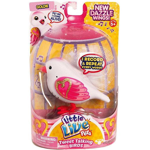 Говорящая птичка Pack Goldie, Little Live Pets, MooseИнтерактивные животные<br>Говорящая птичка Pack Goldie, Little Live Pets, Moose  – это интерактивная игрушка, которая вызовет восторг у вашего ребенка.<br>Pack Goldie — это говорящая птичка из четвертой серии Little Live Pets, разработанной австралийской компанией Moose . Птички стали более красивыми. Их крылья переливаются и блестят на солнце. Если погладить птичку по голове - она начнет весело чирикать. В арсенале птички порядка 30 мелодий. Кроме того, она способна запоминать короткие фразы и слова, и воспроизводить их на свой манер. Когда птичка щебечет или произносит слова, у нее двигается нижняя часть клювика. Все это делает игрушечную птичку похожей на настоящую. Неординарный окрас птички покорит любого. Туловище у нее нежно-розовое, а на крылышках блестящими золотистыми красками нарисовано сердечко, которое мерцает при свете. Птичка легко помещается на ладошке ребенка. Ее всегда можно взять с собой на прогулку. Игрушка сделана из высококачественного безопасного пластика, сверху покрыта мягким и приятным на ощупь материалом - флоком.<br><br>Дополнительная информация:<br><br>- Игрушка рекомендована для детей в возрасте от 5 лет<br>- Цвет: розовый, малиновый, золотистый<br>- Материал: высококачественный пластик, флок<br>- Батарейки: 2 типа ААА (в комплект не входят)<br>- Размер упаковки: 14,1 x 5,7 x 22 см.<br><br>Говорящую птичку Pack Goldie, Little Live Pets, Moose  можно купить в нашем интернет-магазине.<br><br>Ширина мм: 140<br>Глубина мм: 55<br>Высота мм: 220<br>Вес г: 960<br>Возраст от месяцев: 60<br>Возраст до месяцев: 108<br>Пол: Унисекс<br>Возраст: Детский<br>SKU: 4324835