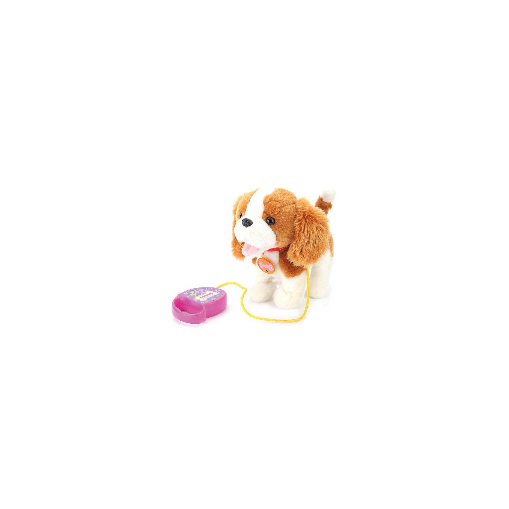 Интерактивный щенок Рикки, Играем вместеИнтерактивный щенок Рикки, Играем вместе – этот пушистый щенок, которого можно выгуливать на поводке станет настоящим другом малышу.<br>Интерактивный щенок со звучным именем Рикки оснащен сенсорами и реагирует на движения, а также на поглаживания по спинке. В комплекте с обаятельным псом вы найдете его любимое лакомство. Он обожает грызть свою косточку, при этом издавая забавные звуки. Щенок ходит, мотает головой и виляет хвостиком. Кроме того, Рикки звонко лает и скулит. Щенка можно выгуливать, держа за пульт-поводок, чтобы он не убежал. Если нужно, поводок можно легко отстегнуть. Шкурка щенка изготовлена из очень приятного на ощупь искусственного меха, а на шее есть стильный ремешок-ошейник. Этот милый интерактивный щенок не оставит равнодушными ни детей, ни их родителей!<br><br>Дополнительная информация:<br><br>- 8 функций: реагирует на поглаживание по спинке, реагирует на движение, грызет косточку со звуком, двигает головой, виляет хвостом, ходит, лает, скулит<br>- В комплекте: щенок, косточка, пульт-поводок<br>- Размер: 25 см.<br>- Цвет: белый, светло-коричневый<br>- Материал: искусственный мех, наполнитель, пластик<br>- Батарейки: 3 типа АА (входят в комплект)<br>- Размер упаковки: 20 x 30 x 29 см.<br>- Вес: 730 гр.<br><br>Интерактивного щенка Рикки, Играем вместе можно купить в нашем интернет-магазине.<br><br>Ширина мм: 590<br>Глубина мм: 610<br>Высота мм: 320<br>Вес г: 730<br>Возраст от месяцев: 36<br>Возраст до месяцев: 96<br>Пол: Женский<br>Возраст: Детский<br>SKU: 4395907