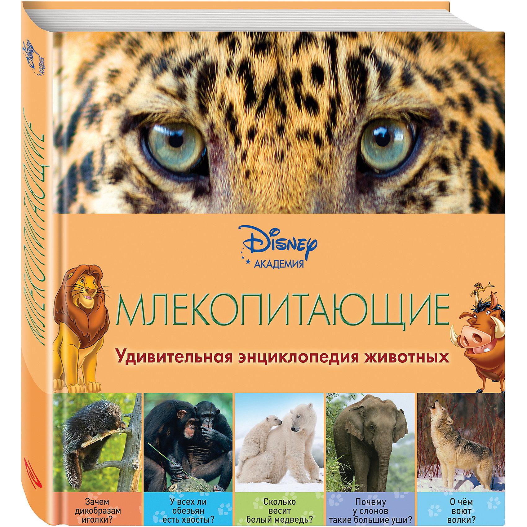 Первая энциклопедия Млекопитающие, DisneyЭксмо<br>Герои Disney приглашают маленьких читателей в невероятный мир кошек, собак, жирафов, кенгуру, дельфинов и других млекопитающих животных! В компании любимых персонажей ребёнок узнает о том, зачем обезьянам длинные хвосты, где они принимают горячие ванны, почему медведи впадают в зимнюю спячку, как слоны используют хоботы… Малыша ждут не только любопытнейшие факты, изложенные доступным и увлекательным языком, но и восхитительные фотографии – большие, яркие и красочные! Благодаря этой книге, ребёнок разовьёт познавательные способности, кругозор и структурное мышление, а также получит первый опыт работы с энциклопедической литературой. <br><br>Дополнительная информация:<br><br>- Переводчик: Дыдымова О. В.<br>- Редактор: Жилинская А.<br>- Формат: 21,5х21,5 см.<br>- Переплет: твердый.<br>- Количество страниц: 40 <br>- Иллюстрации: цветные.<br><br>Книгу Млекопитающие (2-е издание) можно купить в нашем магазине.<br><br>Ширина мм: 210<br>Глубина мм: 210<br>Высота мм: 8<br>Вес г: 322<br>Возраст от месяцев: 36<br>Возраст до месяцев: 72<br>Пол: Унисекс<br>Возраст: Детский<br>SKU: 4414960
