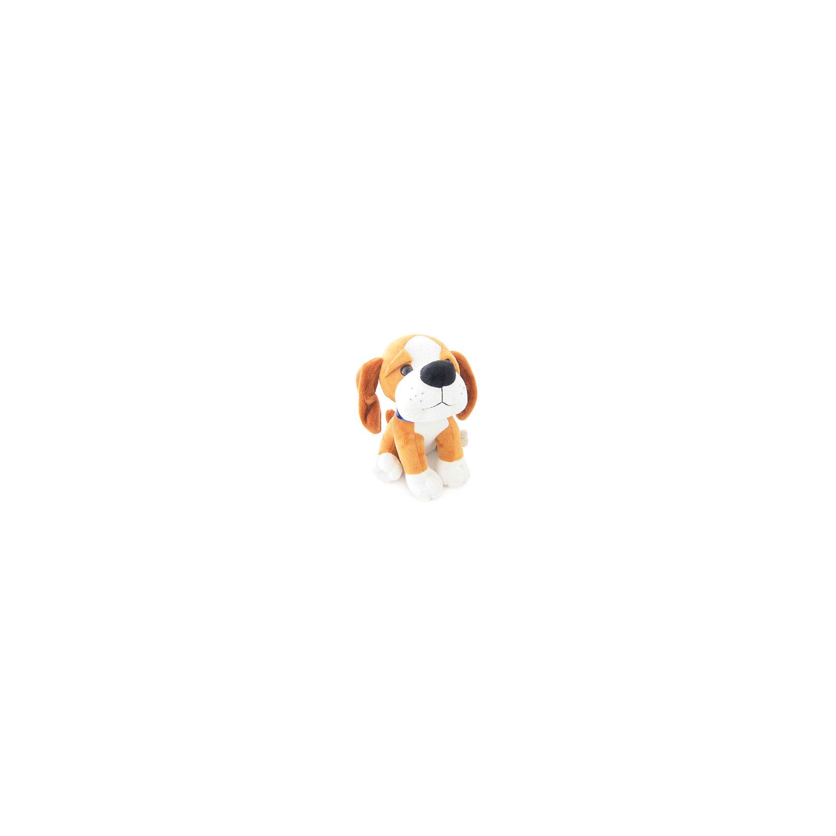 Щенок Рекс, музыкальный, 20 см., LAVAЭтот милый щенок приведет в восторг любого ребенка! Щенка зовут Рекс, он очень мягкий, приятный на ощупь и умеет петь веселую песенку. Игрушка изготовлена из высококачественного материала, абсолютно безопасного для детей. <br><br>Дополнительная информация:<br><br>- Материал: искусственный мех, текстиль, синтепон, пластик.<br>- Высота: 20 см. <br>- Поет песенку (Щенок с косточкой...).<br>- Элемент питания: батарейка (в комплекте).<br><br>Щенка Рекс, музыкального, 20 см., LAVA (ЛАВА) можно купить в нашем магазине.<br><br>Ширина мм: 150<br>Глубина мм: 150<br>Высота мм: 200<br>Вес г: 258<br>Возраст от месяцев: 36<br>Возраст до месяцев: 1188<br>Пол: Унисекс<br>Возраст: Детский<br>SKU: 4444126