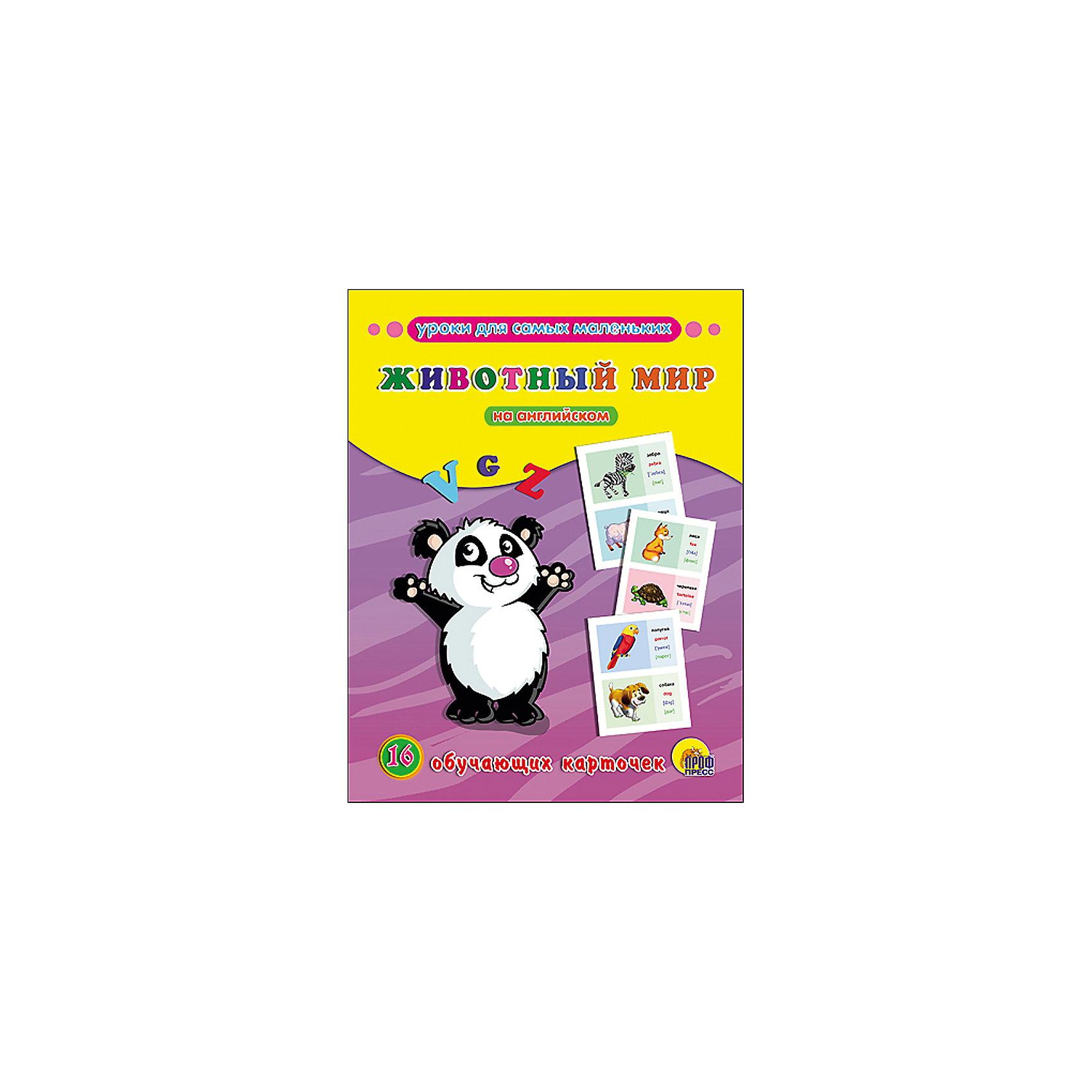 Обучающие карточки Животный мир на английскомОбучающие карточки Животный мир на английском – комплект красочно иллюстрированных карточек из серии «Уроки для самых маленьких».<br>Обучающие карточки помогут ребёнку узнать много интересного об окружающем мире, его богатстве и многообразии. Каждый набор включает 16 карточек и посвящён определённой тематике. Данный набор в познавательной и в то же время игровой форме познакомит ребёнка с английскими словами. Он узнает, как произносятся буквы и слова в английском языке. Для этого в отдельной таблице приведена транскрипция, что облегчает и ускоряет процесс обучения. С карточками можно организовать и множество игр на развитие внимания, логического мышления и памяти. Работа с карточками станет для малыша не только увлекательным занятием, но и начальным этапом подготовки к дальнейшему обучению в школе.<br><br>Дополнительная информация:<br><br>- В наборе: 16 картонных карточек<br>- Издательство: Проф-Пресс<br>- Иллюстрации: цветные<br>- Размер карточки: 170х220 мм.<br>- Упаковка: картонная папка<br>- Размер: 220x170x3 мм.<br>- Вес: 160 гр.<br><br>Обучающие карточки Животный мир на английском можно купить в нашем интернет-магазине.<br><br>Ширина мм: 170<br>Глубина мм: 3<br>Высота мм: 220<br>Вес г: 160<br>Возраст от месяцев: 0<br>Возраст до месяцев: 36<br>Пол: Унисекс<br>Возраст: Детский<br>SKU: 4500289