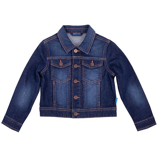Джинсовая куртка для мальчика Button BlueВерхняя одежда<br>Джинсовая куртка для мальчика - базовая вещь весеннего-летнего гардероба! Она отлично сочетается с брюками, шортами, бриджами, делая комплект интересным и завершенным. Вы хотите, чтобы ваш ребенок был в тренде? Вы предпочитаете купить джинсовую куртку недорого и не сомневаться в ее качестве и комфорте? Тогда джинсовая куртка от Button Blue для вас!<br>Состав:<br>98,6% хлопок, 1,4% эластан<br><br>Ширина мм: 356<br>Глубина мм: 10<br>Высота мм: 245<br>Вес г: 519<br>Цвет: синий<br>Возраст от месяцев: 36<br>Возраст до месяцев: 48<br>Пол: Мужской<br>Возраст: Детский<br>Размер: 104,158,110,116,134,122,146,140,98,152,128<br>SKU: 4510302