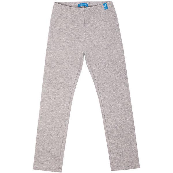 Леггинсы для девочки Button BlueЛеггинсы<br>Лосины для девочек - хит летнего и домашнего гардероба! Модные, удобные, практичные, серые меланжевые лосины в - отличная вещь на каждый день. Купить детские лосины Button Blue, значит, купить лосины недорого и быстро, не сомневаясь в их качестве и комфорте.<br>Состав:<br>95% хлопок                                         5% эластан<br><br>Ширина мм: 123<br>Глубина мм: 10<br>Высота мм: 149<br>Вес г: 209<br>Цвет: серый<br>Возраст от месяцев: 36<br>Возраст до месяцев: 48<br>Пол: Женский<br>Возраст: Детский<br>Размер: 104,134,140,122,146,110,128,98,152,158,116<br>SKU: 4510557