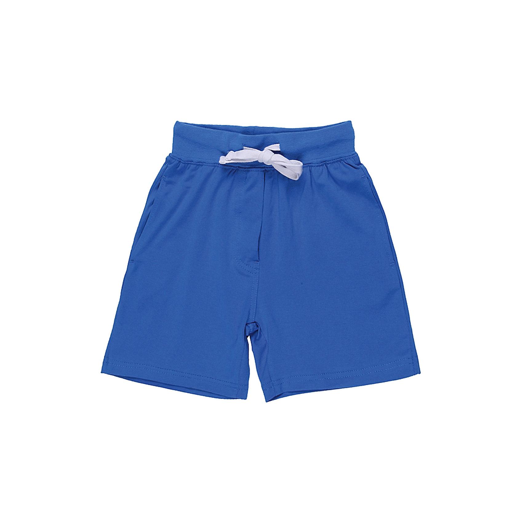 Шорты для мальчика Sweet BerryТрикотажные шорты для мальчика, яркого синего цвета. Пояс с внутренней резинкой и дополнительным хлопковым шнурком.<br>Состав:<br>95% хлопок 5% эластан<br><br>Ширина мм: 191<br>Глубина мм: 10<br>Высота мм: 175<br>Вес г: 273<br>Цвет: синий<br>Возраст от месяцев: 36<br>Возраст до месяцев: 48<br>Пол: Мужской<br>Возраст: Детский<br>Размер: 104,98,122,110,116,128<br>SKU: 4523020