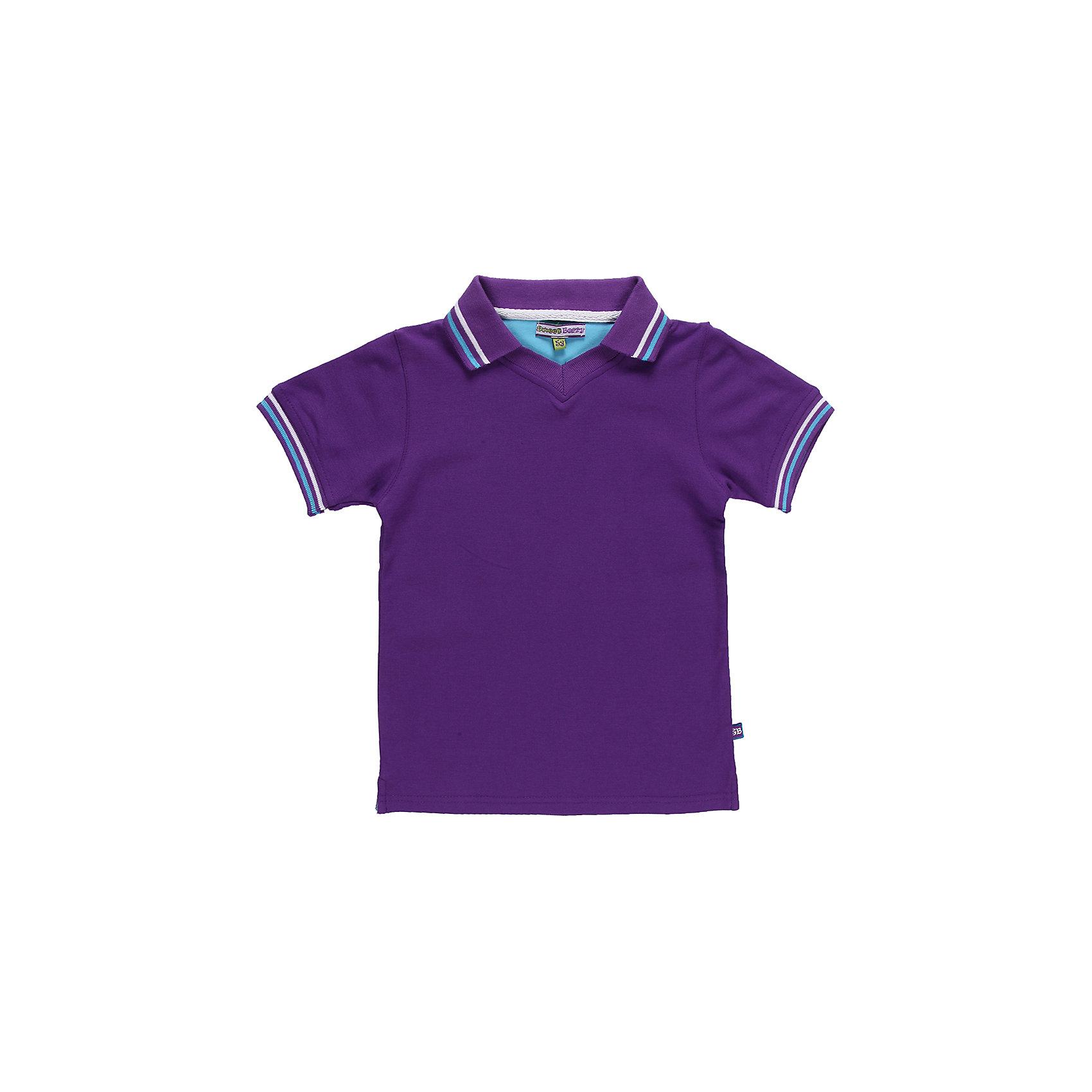 Футболка-поло для мальчика Sweet BerryЯркая футболка-поло красивого цвета для мальчика. По низу рукавов трикотажные манжеты.<br>Состав:<br>95% хлопок 5% эластан<br><br>Ширина мм: 199<br>Глубина мм: 10<br>Высота мм: 161<br>Вес г: 151<br>Цвет: фиолетовый<br>Возраст от месяцев: 24<br>Возраст до месяцев: 36<br>Пол: Мужской<br>Возраст: Детский<br>Размер: 98,104,128,122,116,110<br>SKU: 4523027