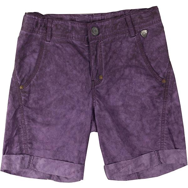 Шорты для мальчика GulliverШорты, бриджи, капри<br>Цветные шорты для мальчика - хит сезона Весна-Лето 2016. Модный цвет, специальная варка изделия, создающая эффект легкой потертости, состаренности изделия, интересный удобный крой делают эту модель незаменимым атрибутом прогулочного гардероба ребенка. Вы хотите купить стильные комфортные шорты на каждый день для лагеря или дачи? Модель, выполненная из мягкого цветного текстиля - оптимальное решение для практичного летнего гардероба стильного активного мальчика.<br>Состав:<br>100% хлопок<br><br>Ширина мм: 191<br>Глубина мм: 10<br>Высота мм: 175<br>Вес г: 273<br>Цвет: лиловый<br>Возраст от месяцев: 84<br>Возраст до месяцев: 96<br>Пол: Мужской<br>Возраст: Детский<br>Размер: 128,152,134,140,158,146<br>SKU: 4534325