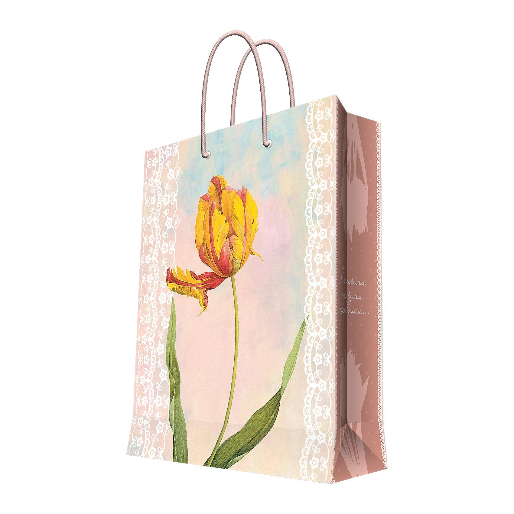 Подарочный пакет Тюльпан 26*32,4*12,7 смКрасиво упакованный подарок приятно получать вдвойне! Прочный красивый бумажный пакет станет прекрасным дополнением к подарку.<br><br>Дополнительная информация:<br><br>- Материал: бумага (плотность бумаги 140 г/м2).<br>- Размер: 26х32,4х12,7 cм.<br>- Ширина основания: 26 см.<br>- Эффект: ламинация.<br><br>Подарочный пакет Тюльпан 26х32,4х12,7 см, можно купить в нашем магазине.<br><br>Ширина мм: 260<br>Глубина мм: 324<br>Высота мм: 127<br>Вес г: 100<br>Возраст от месяцев: 36<br>Возраст до месяцев: 2147483647<br>Пол: Женский<br>Возраст: Детский<br>SKU: 4548396